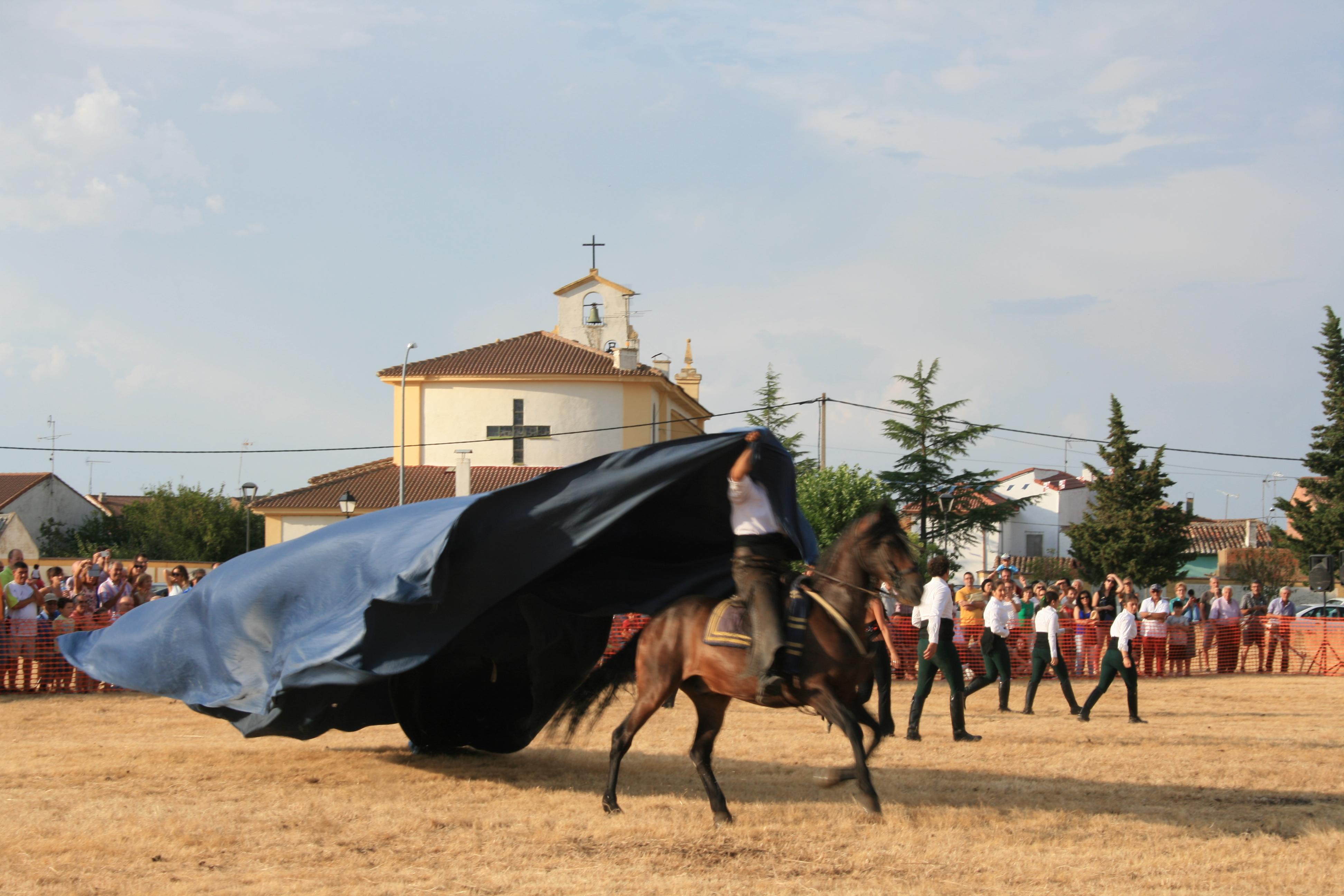 Andrea Magos de la equitación 2016 (107)