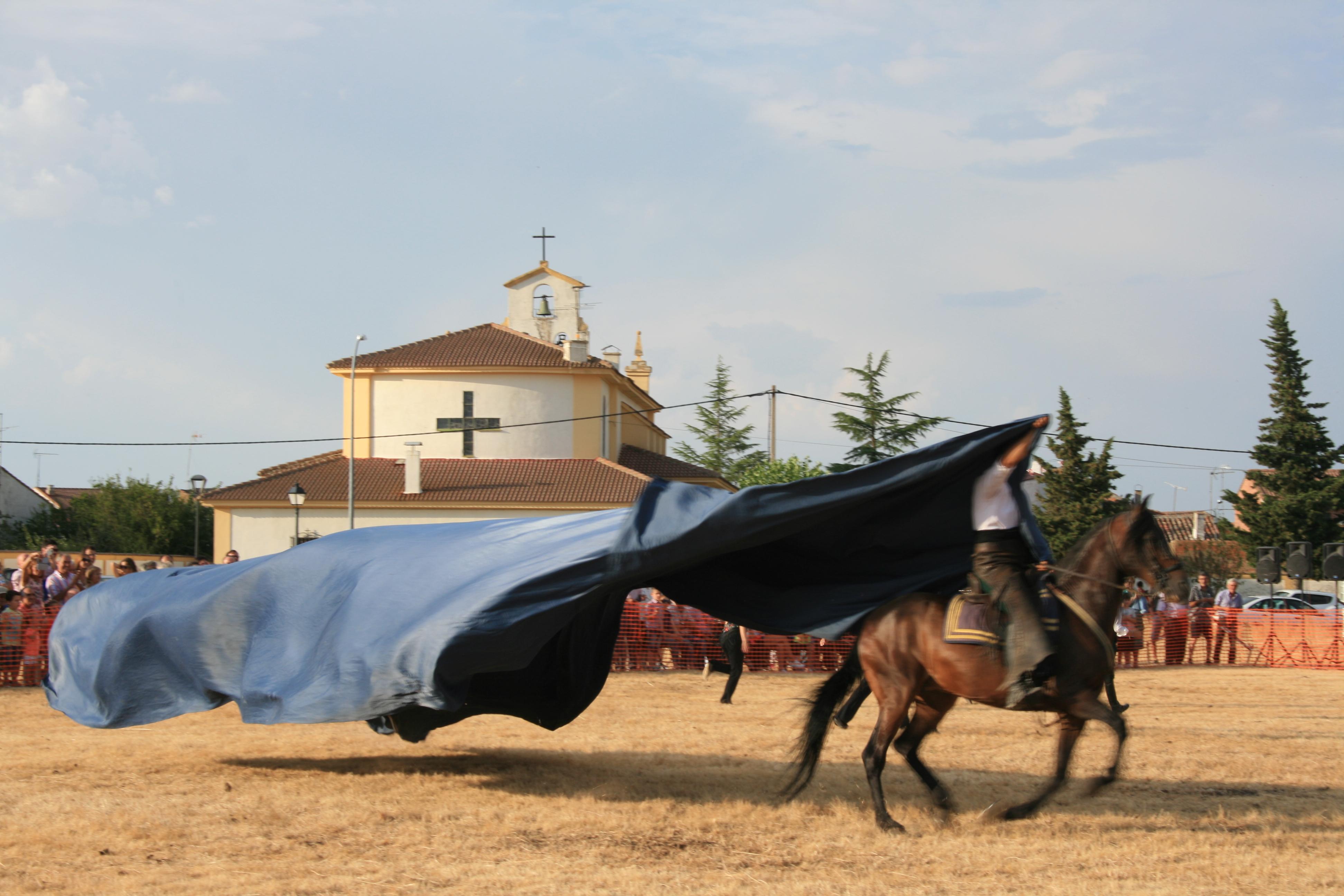 Andrea Magos de la equitación 2016 (108)