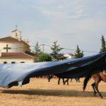 Andrea Magos de la equitación 2016 (109)