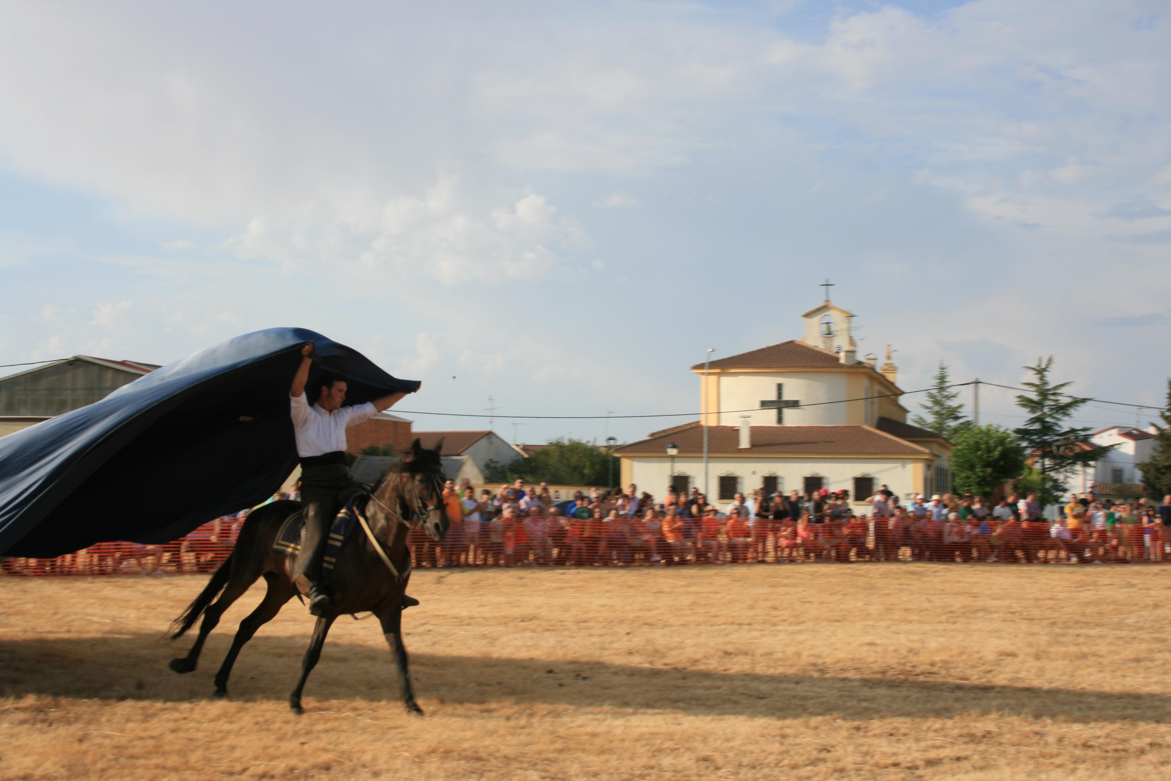 Andrea Magos de la equitación 2016 (110)