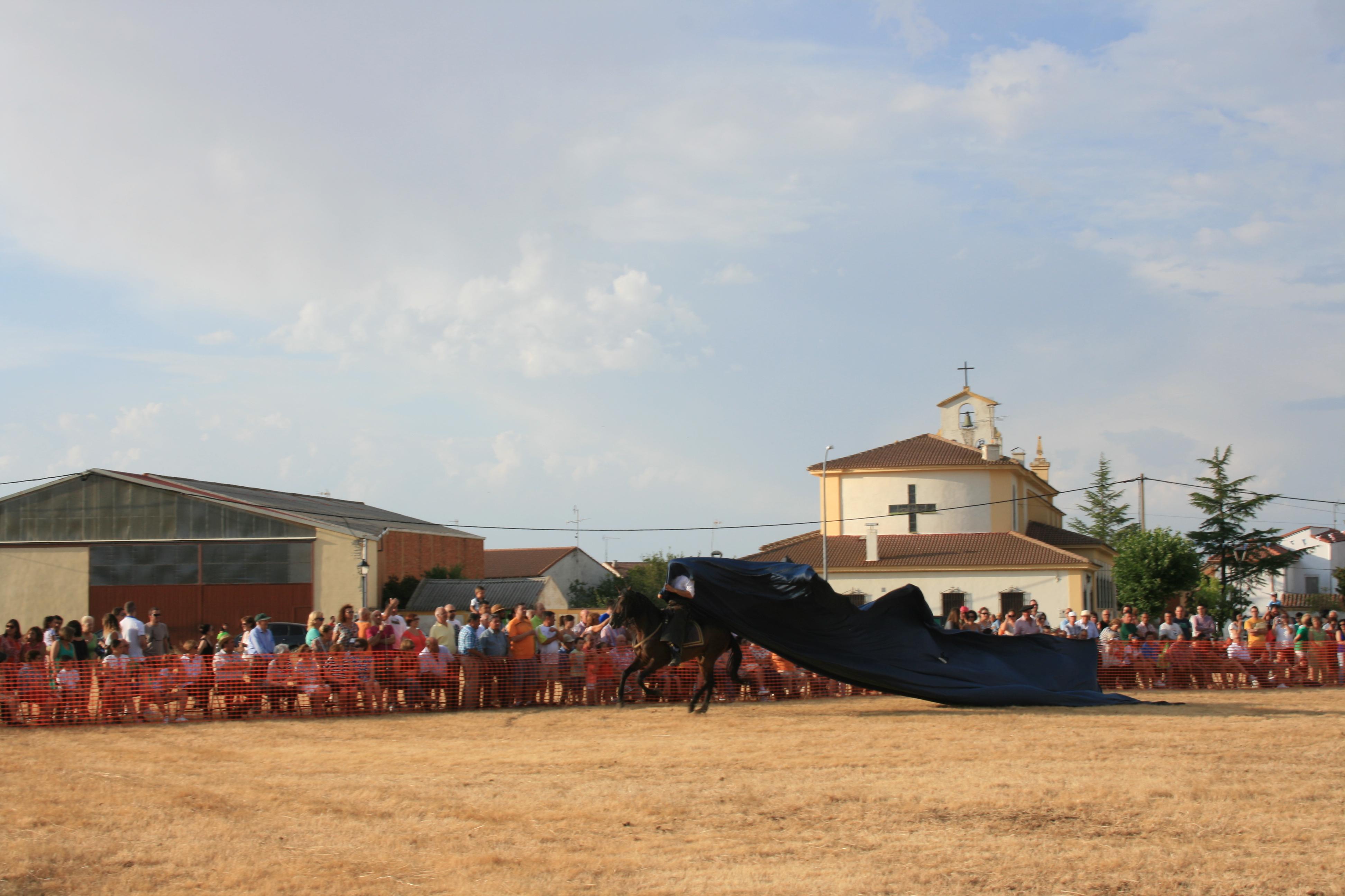 Andrea Magos de la equitación 2016 (112)