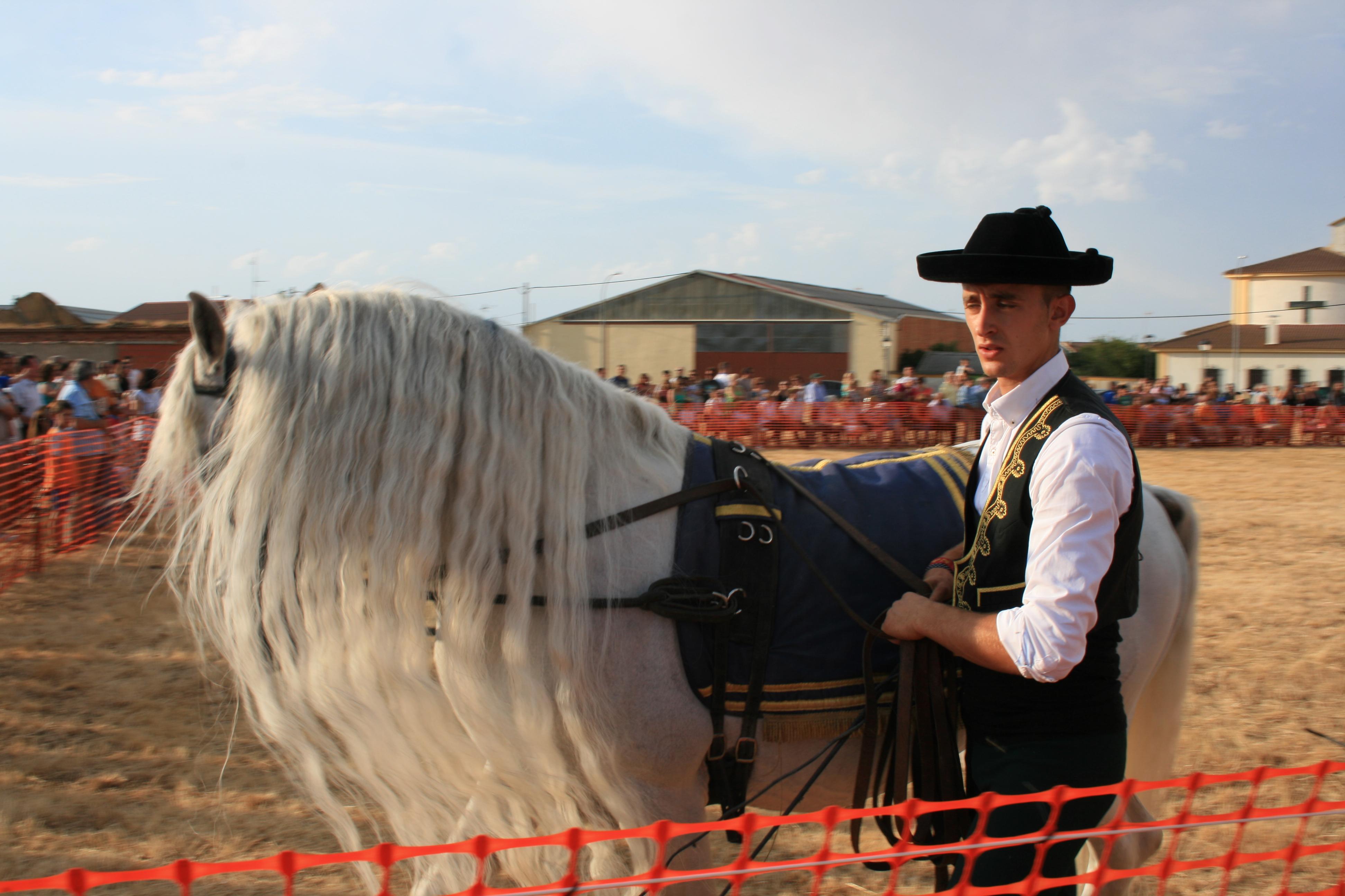 Andrea Magos de la equitación 2016 (115)