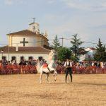 Andrea Magos de la equitación 2016 (118)