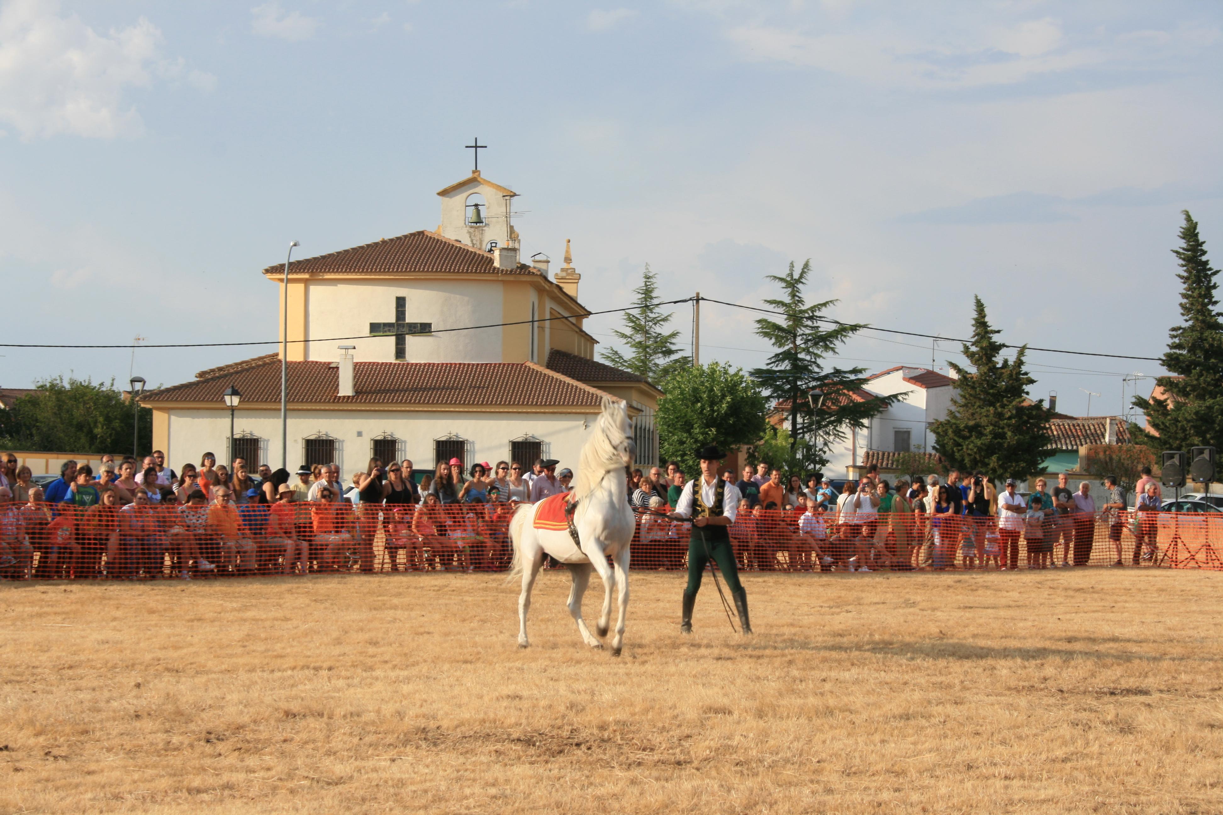 Andrea Magos de la equitación 2016 (120)