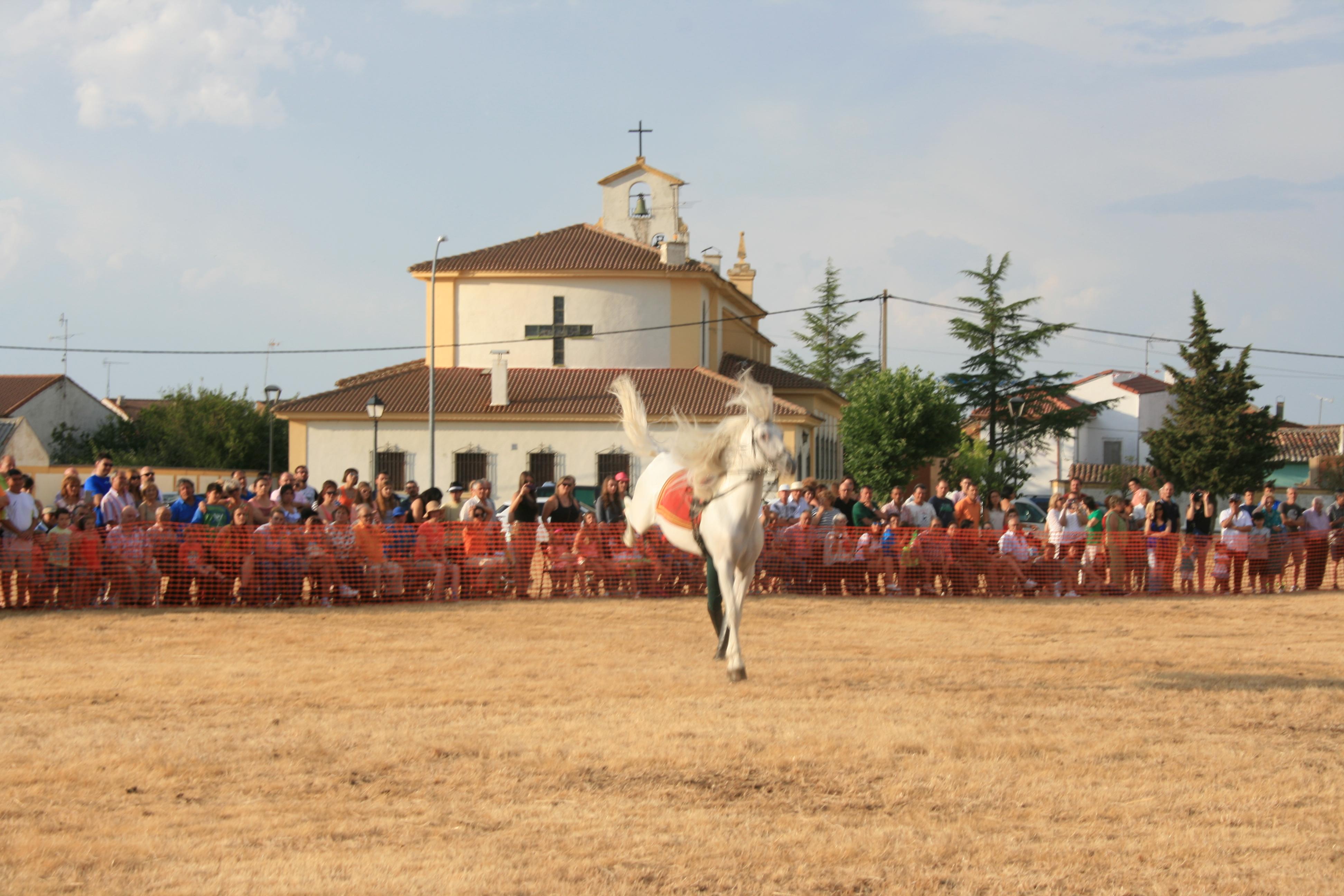 Andrea Magos de la equitación 2016 (121)