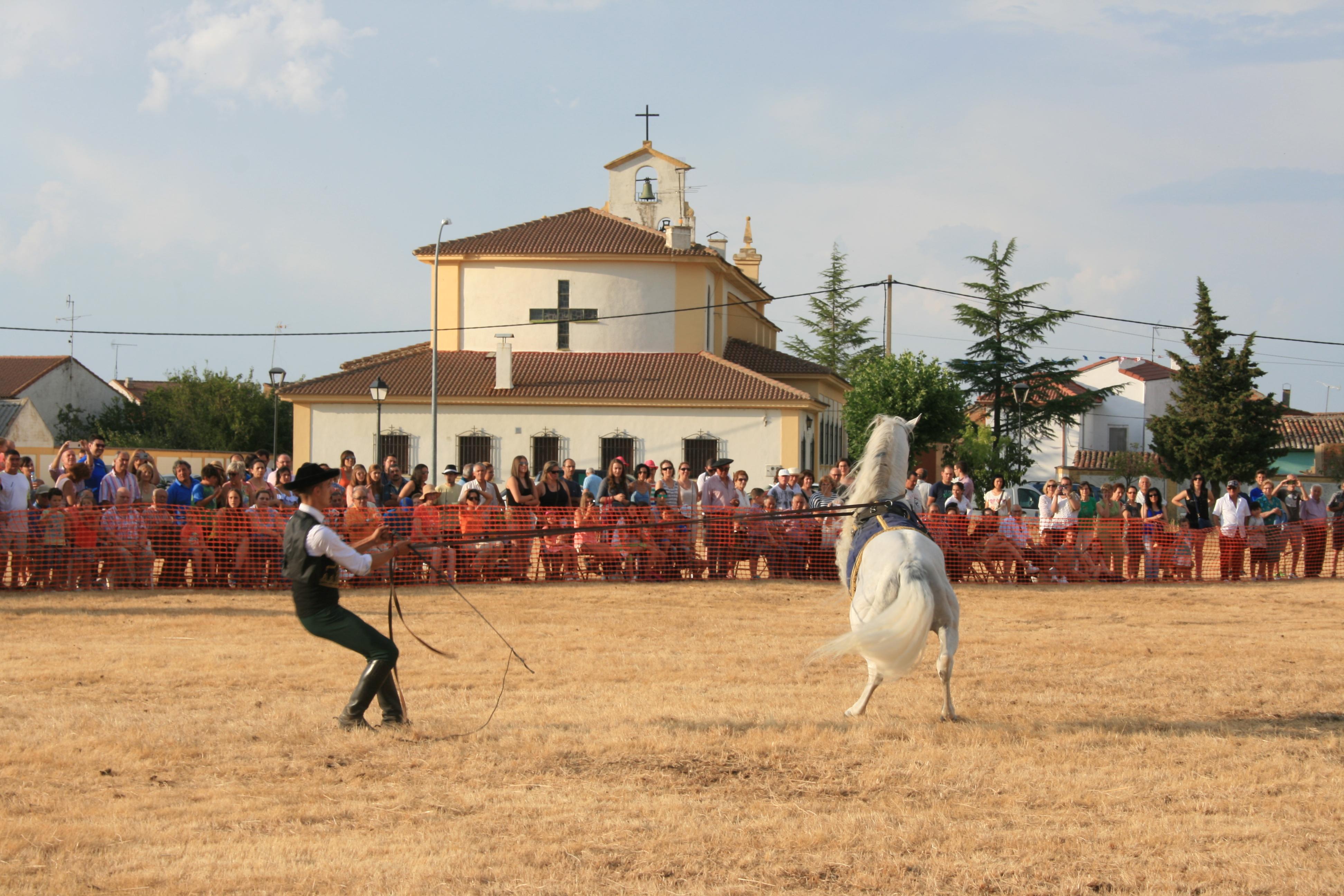 Andrea Magos de la equitación 2016 (124)