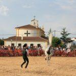 Andrea Magos de la equitación 2016 (126)