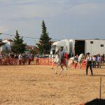 Andrea Magos de la equitación 2016 (128)