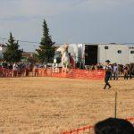Andrea Magos de la equitación 2016 (135)