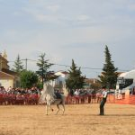 Andrea Magos de la equitación 2016 (137)