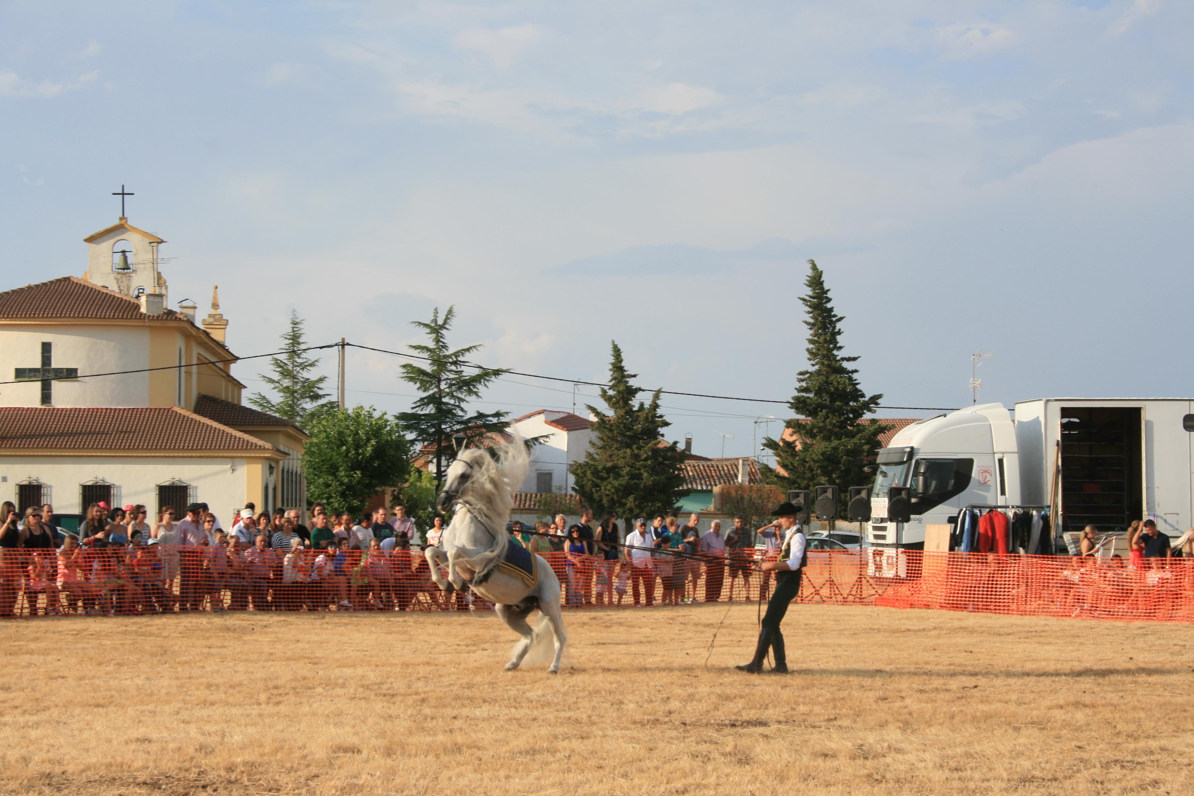 Andrea Magos de la equitación 2016 (138)
