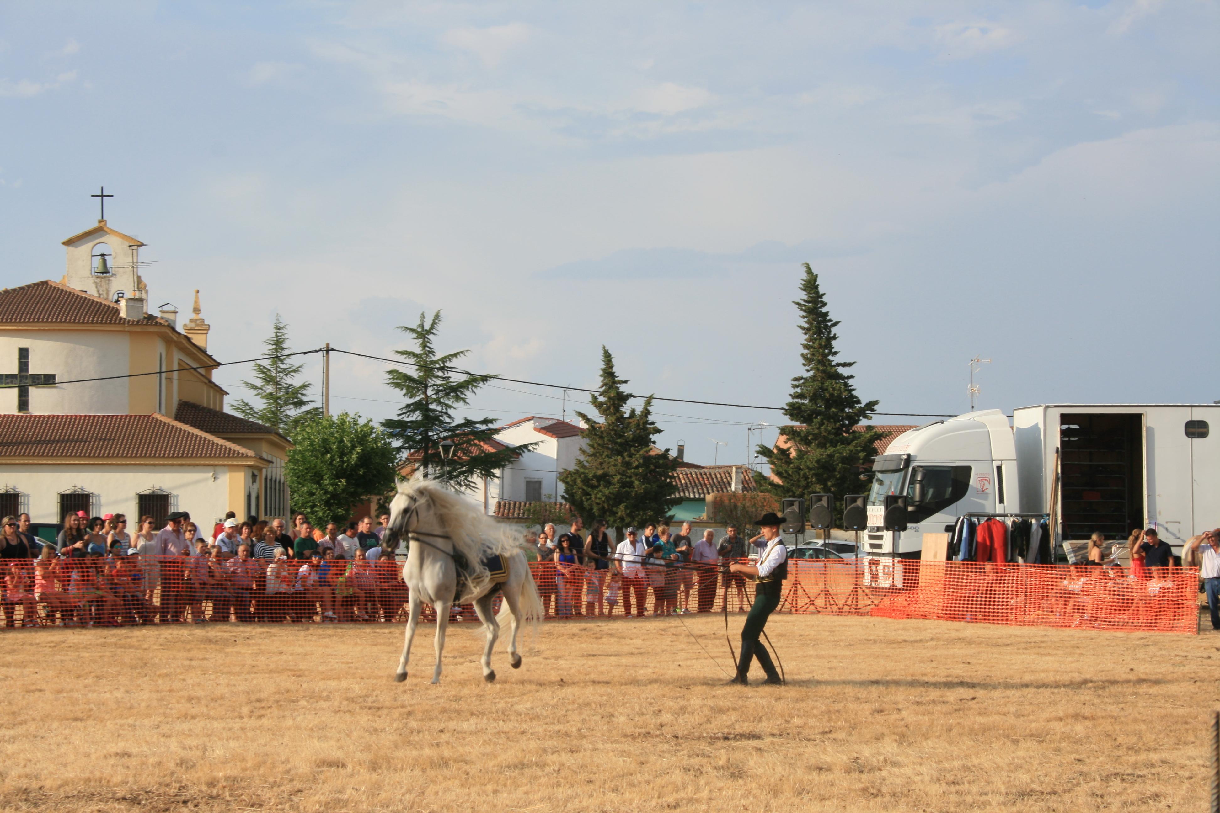 Andrea Magos de la equitación 2016 (139)