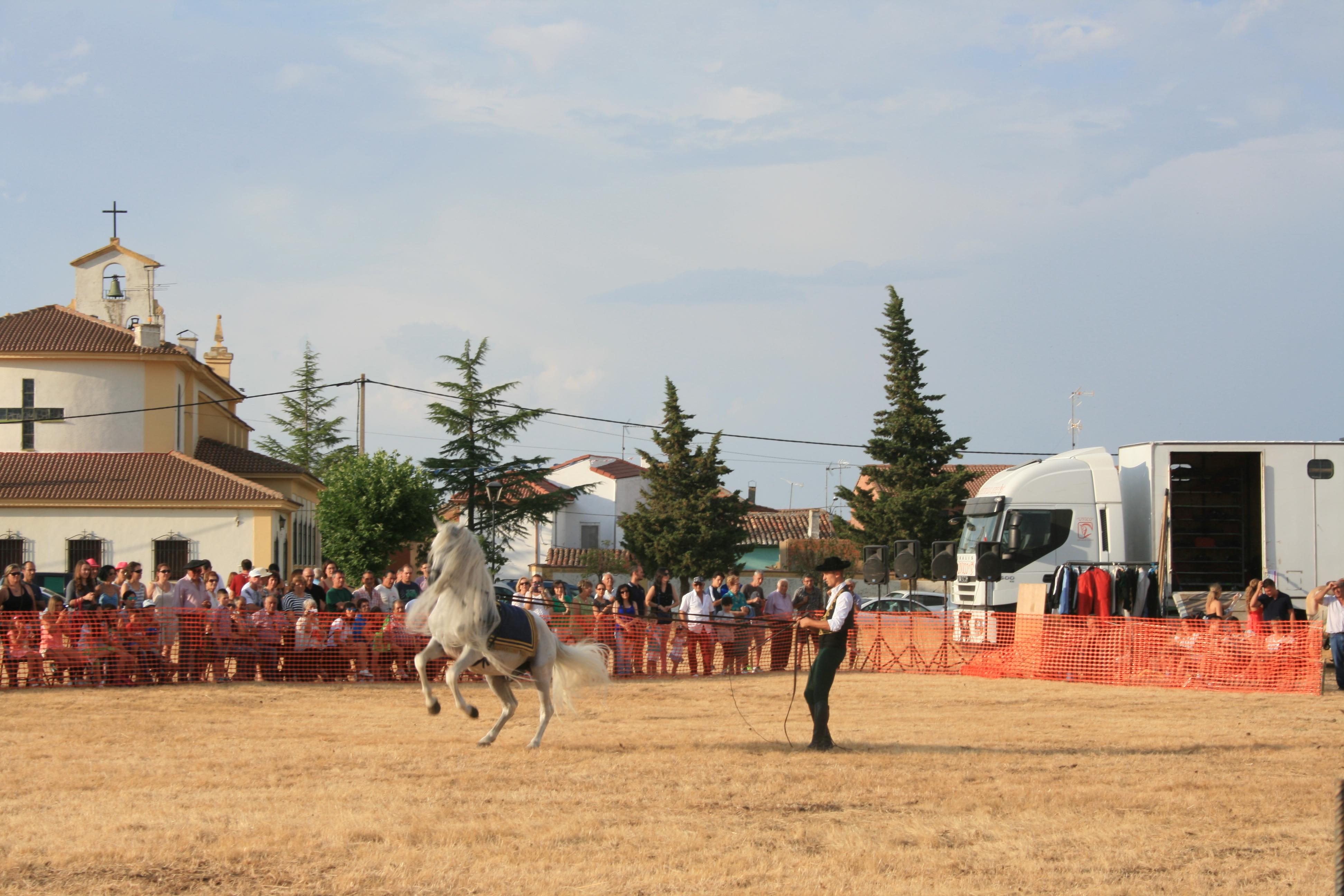 Andrea Magos de la equitación 2016 (140)