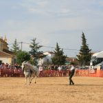 Andrea Magos de la equitación 2016 (141)