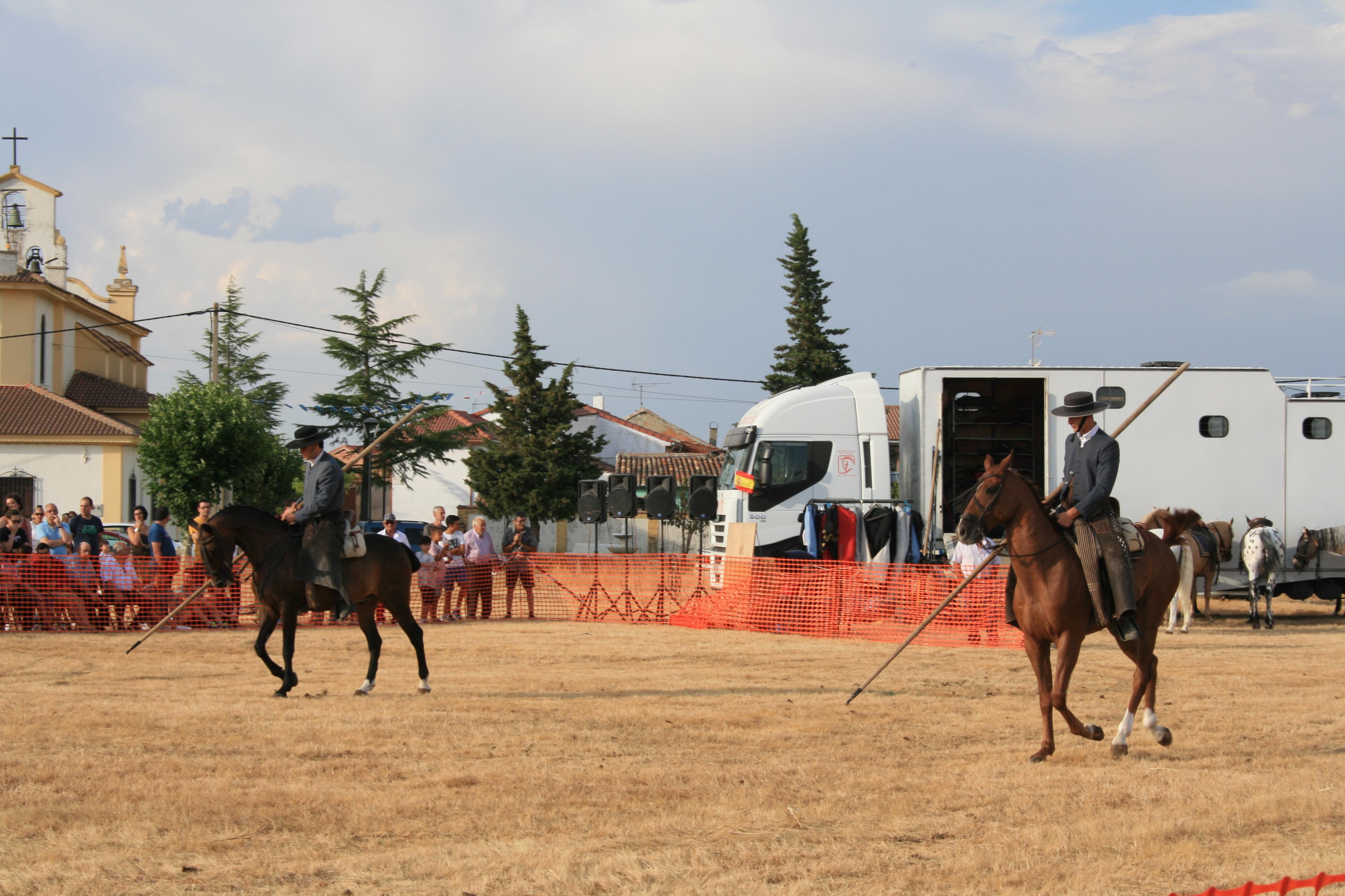 Andrea Magos de la equitación 2016 (71)