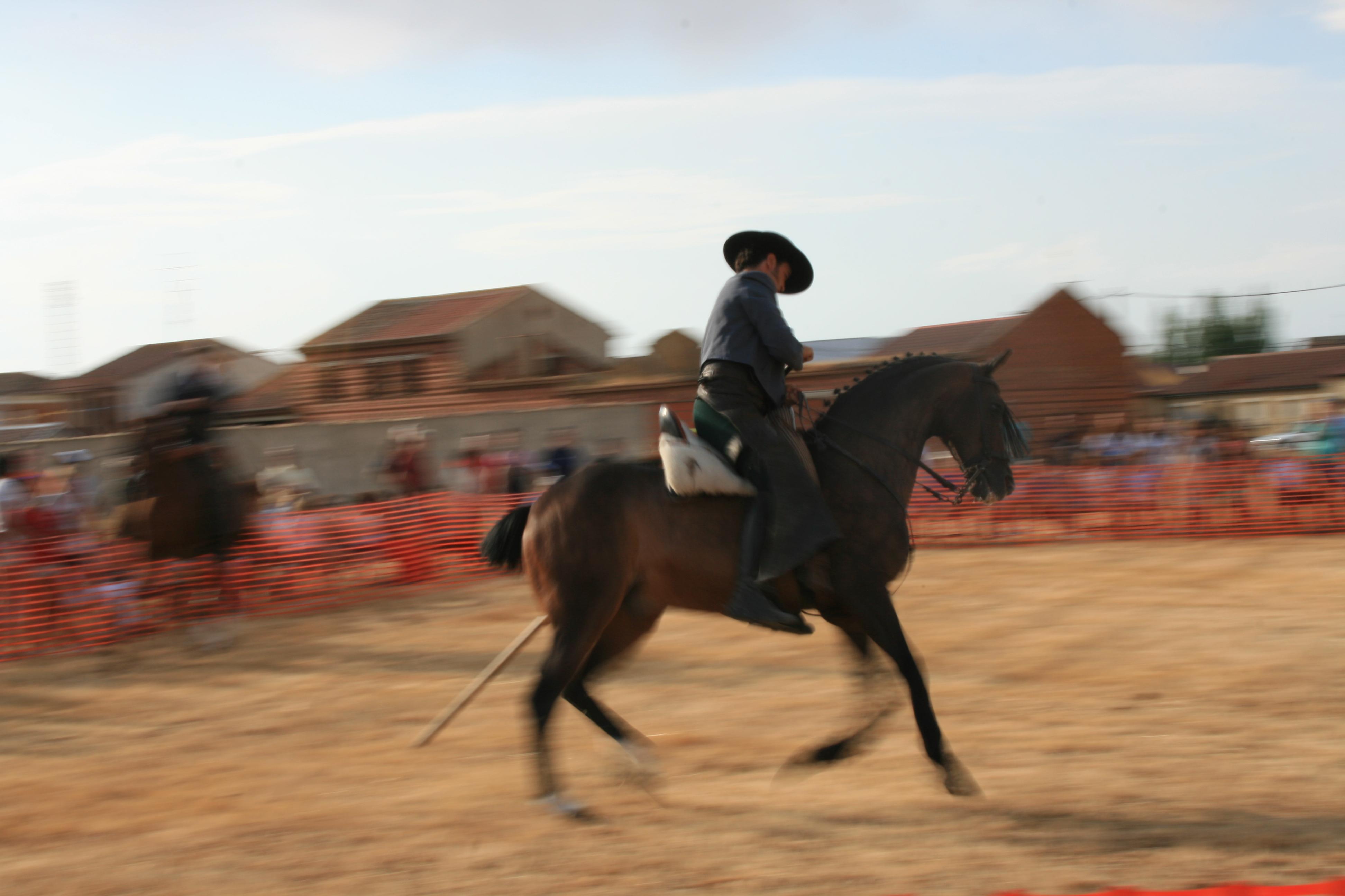 Andrea Magos de la equitación 2016 (72)