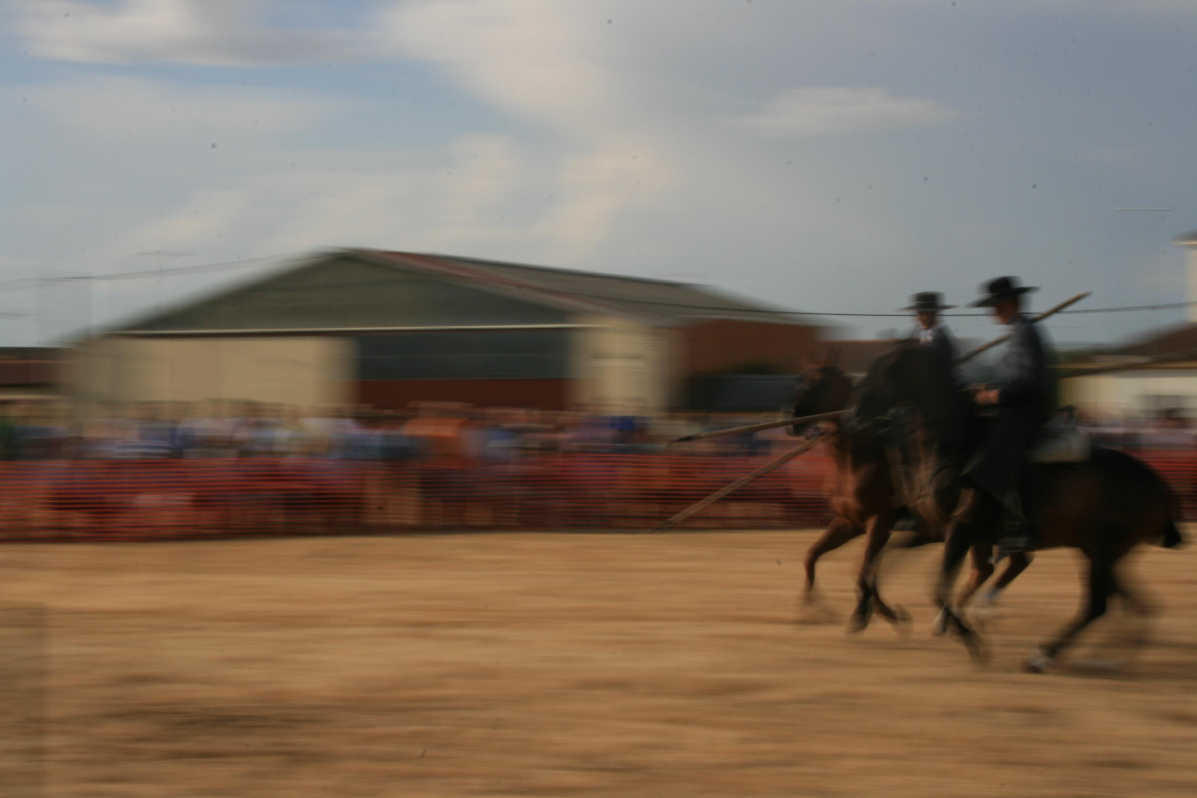 Andrea Magos de la equitación 2016 (76)