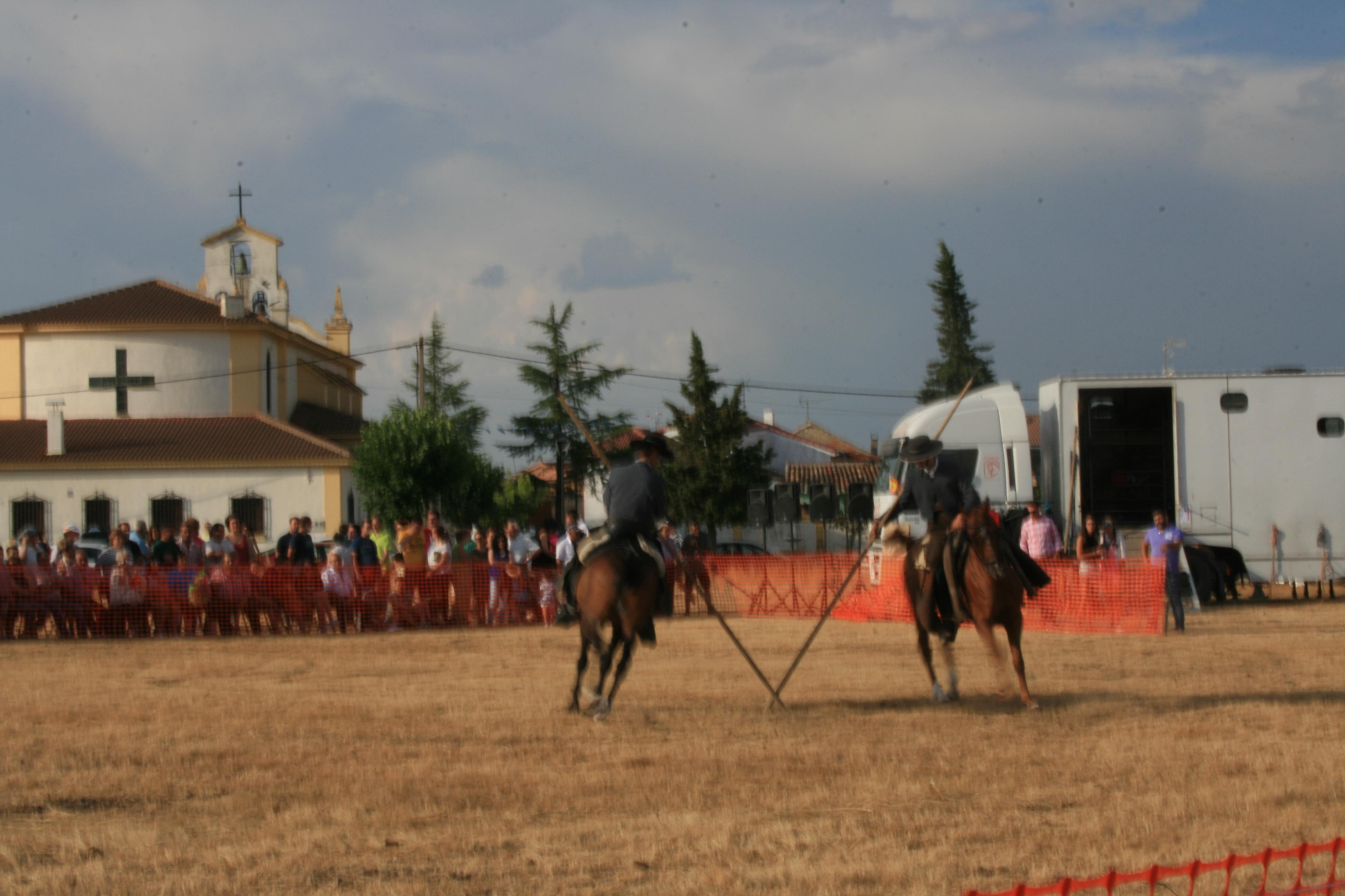 Andrea Magos de la equitación 2016 (77)