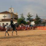 Andrea Magos de la equitación 2016 (87)