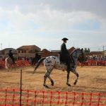 Andrea Magos de la equitación 2016 (88)