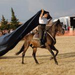 Magos de la equitación 2016 (1)