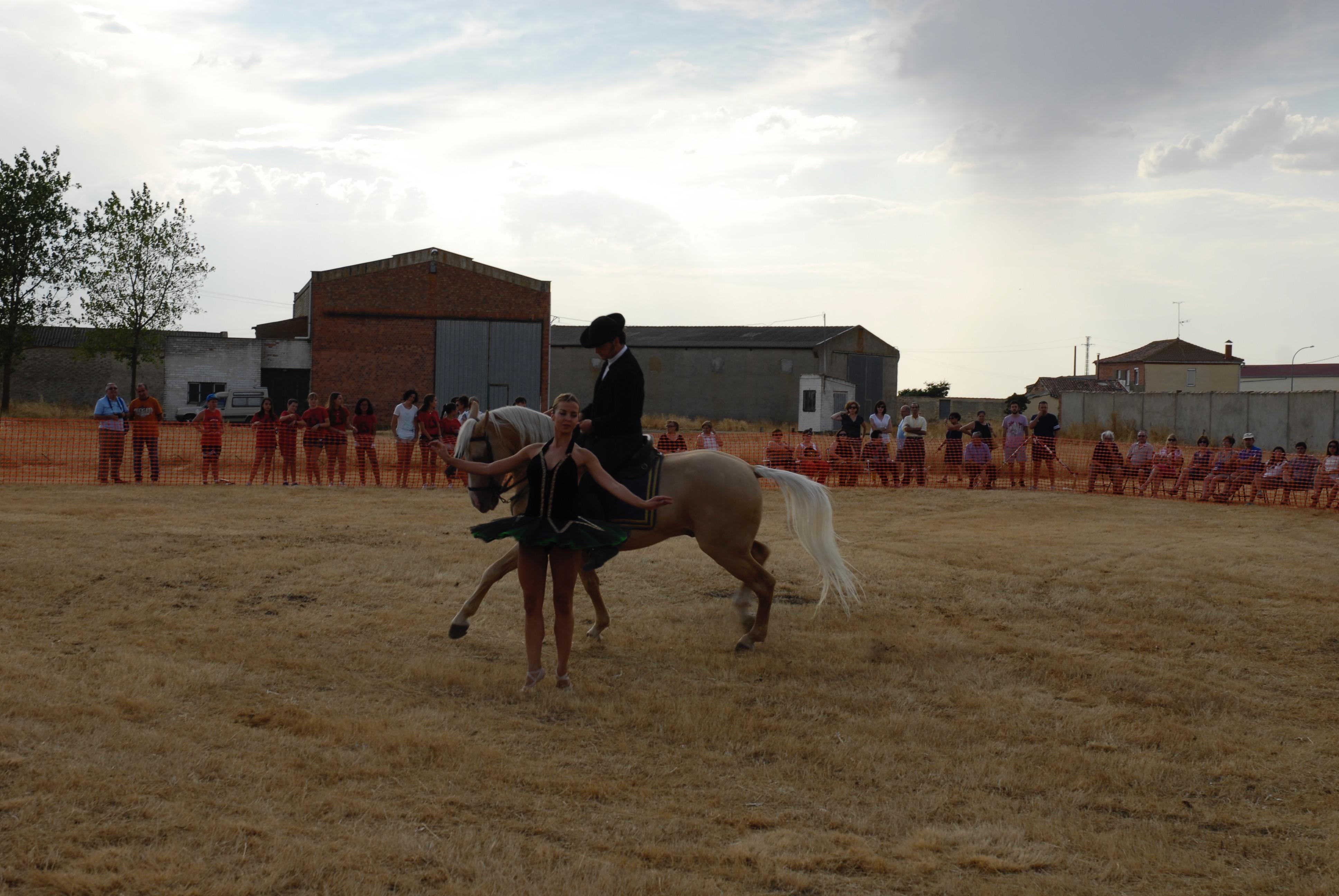 Magos de la equitación 2016 (10)