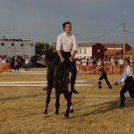 Magos de la equitación 2016 (100)