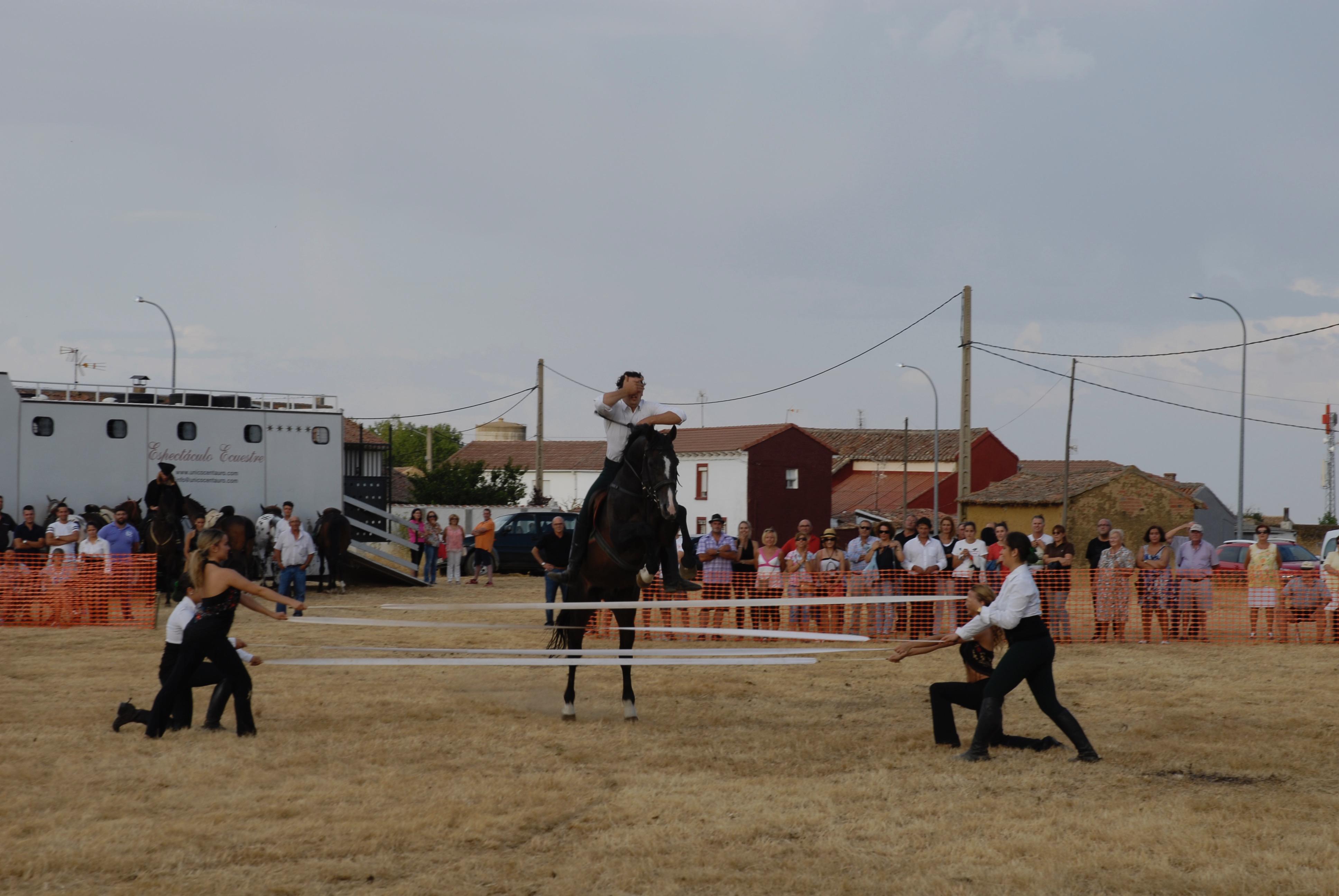 Magos de la equitación 2016 (102)