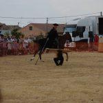 Magos de la equitación 2016 (105)
