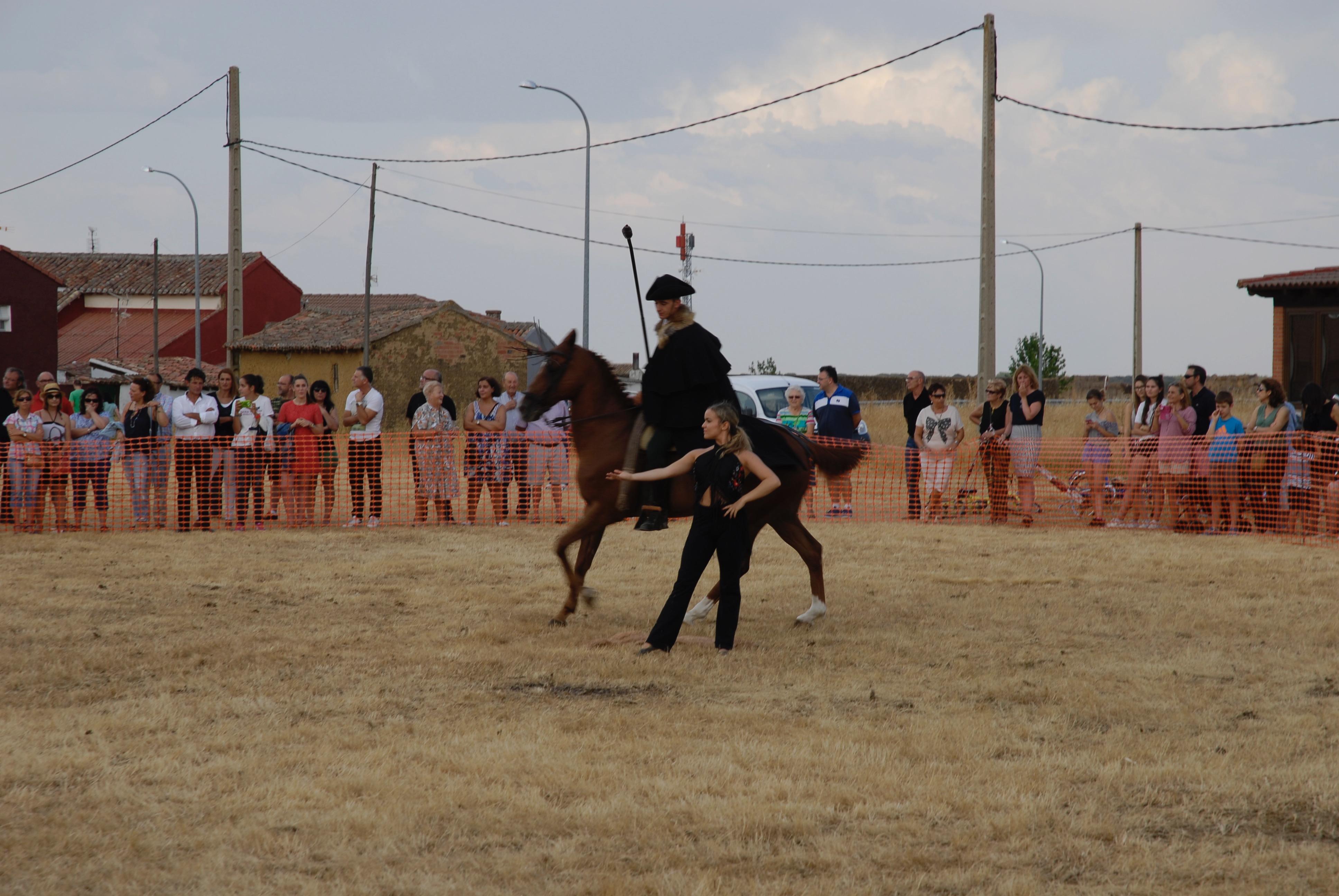 Magos de la equitación 2016 (107)