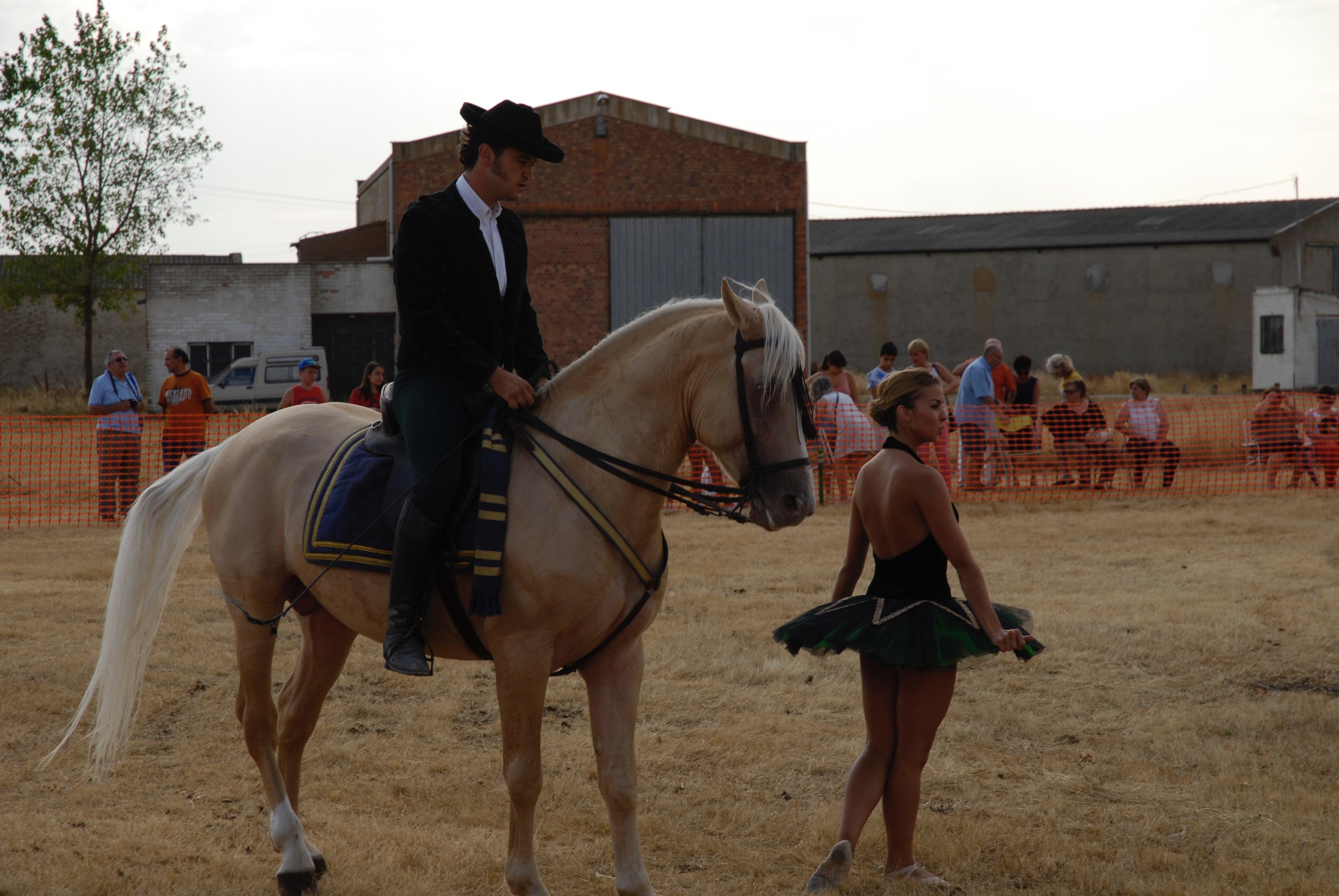 Magos de la equitación 2016 (11)