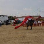 Magos de la equitación 2016 (115)