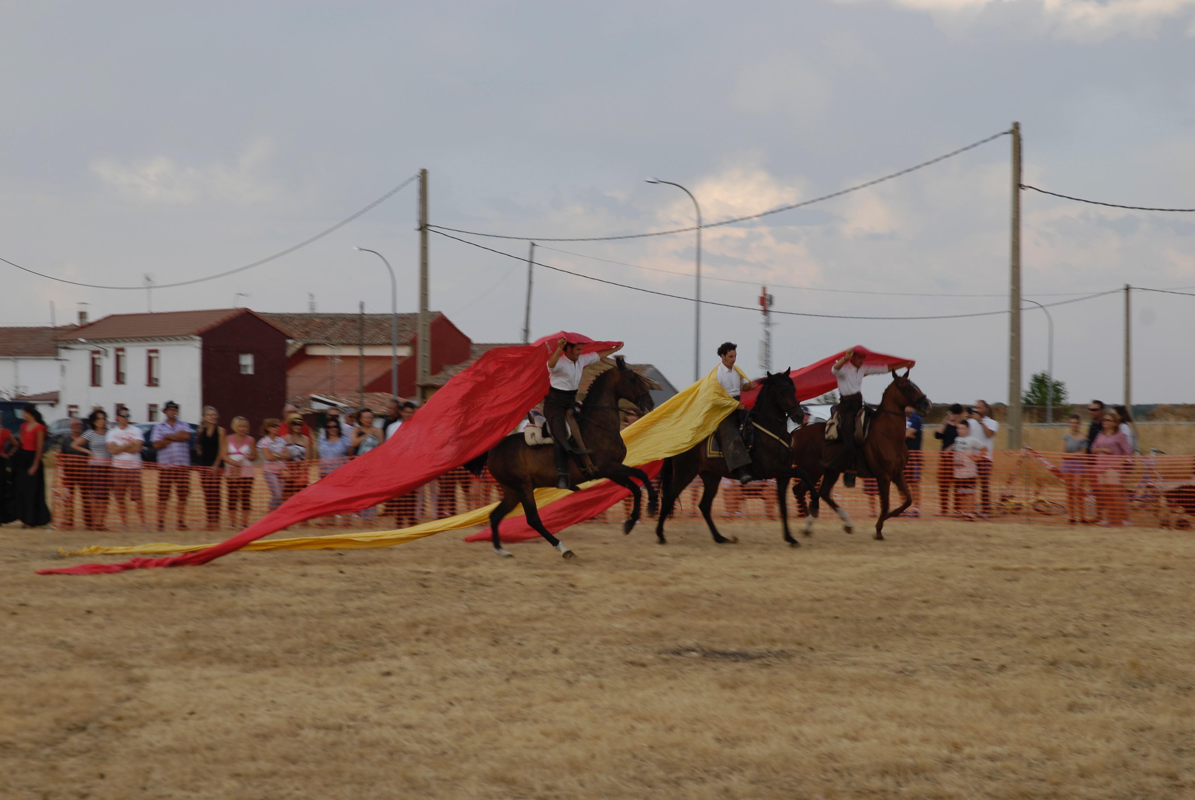 Magos de la equitación 2016 (116)
