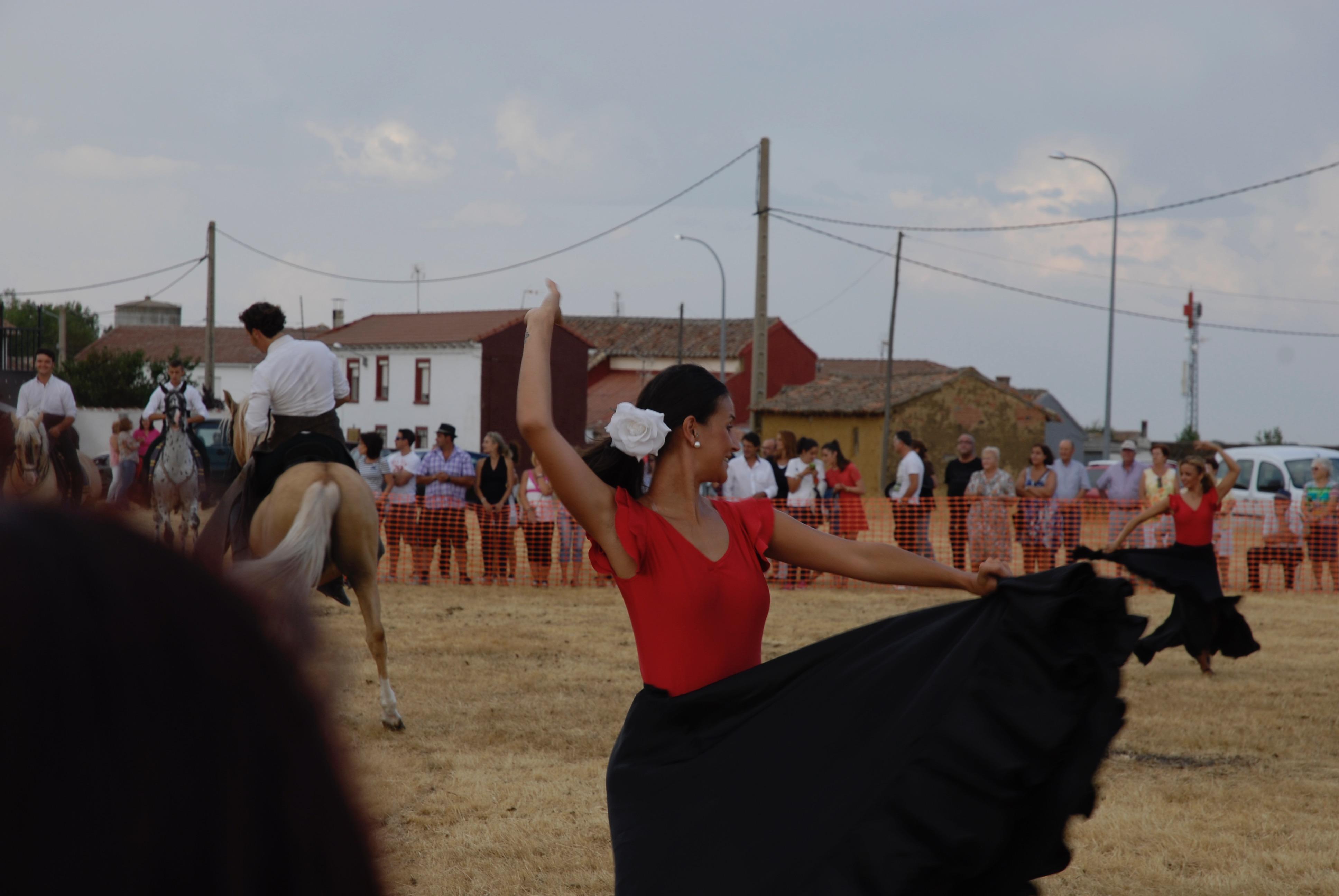 Magos de la equitación 2016 (130)