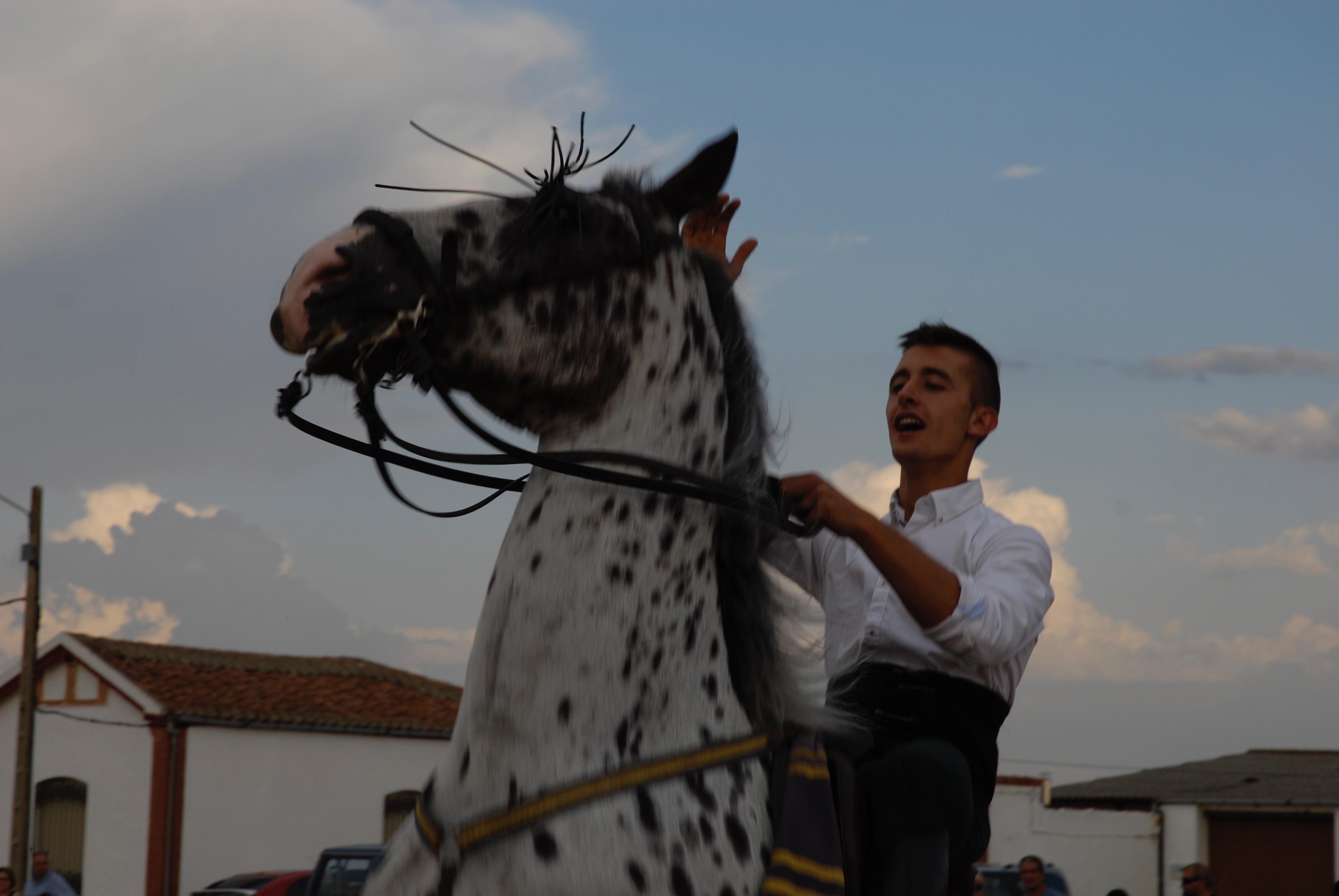 Magos de la equitación 2016 (134)