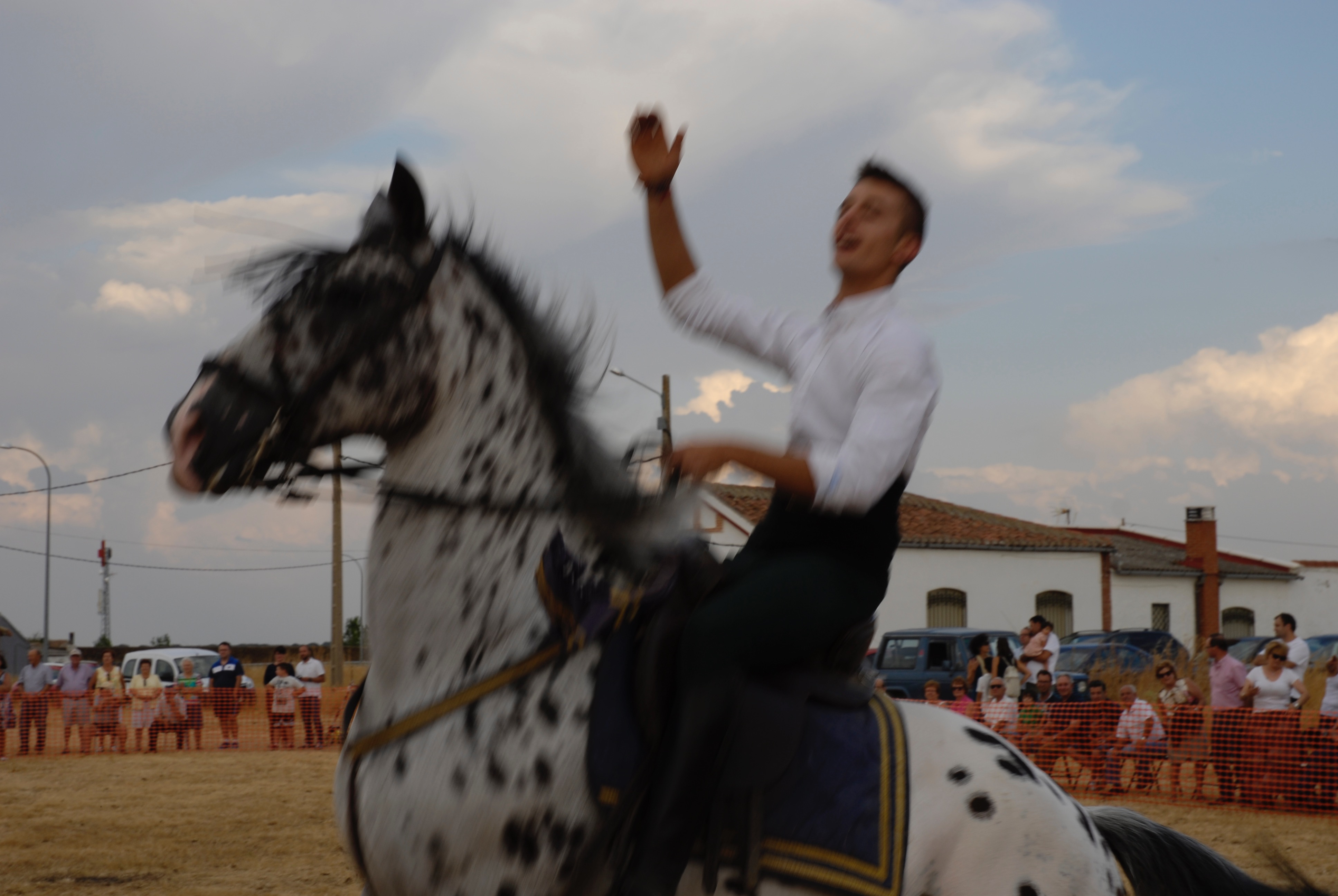 Magos de la equitación 2016 (135)