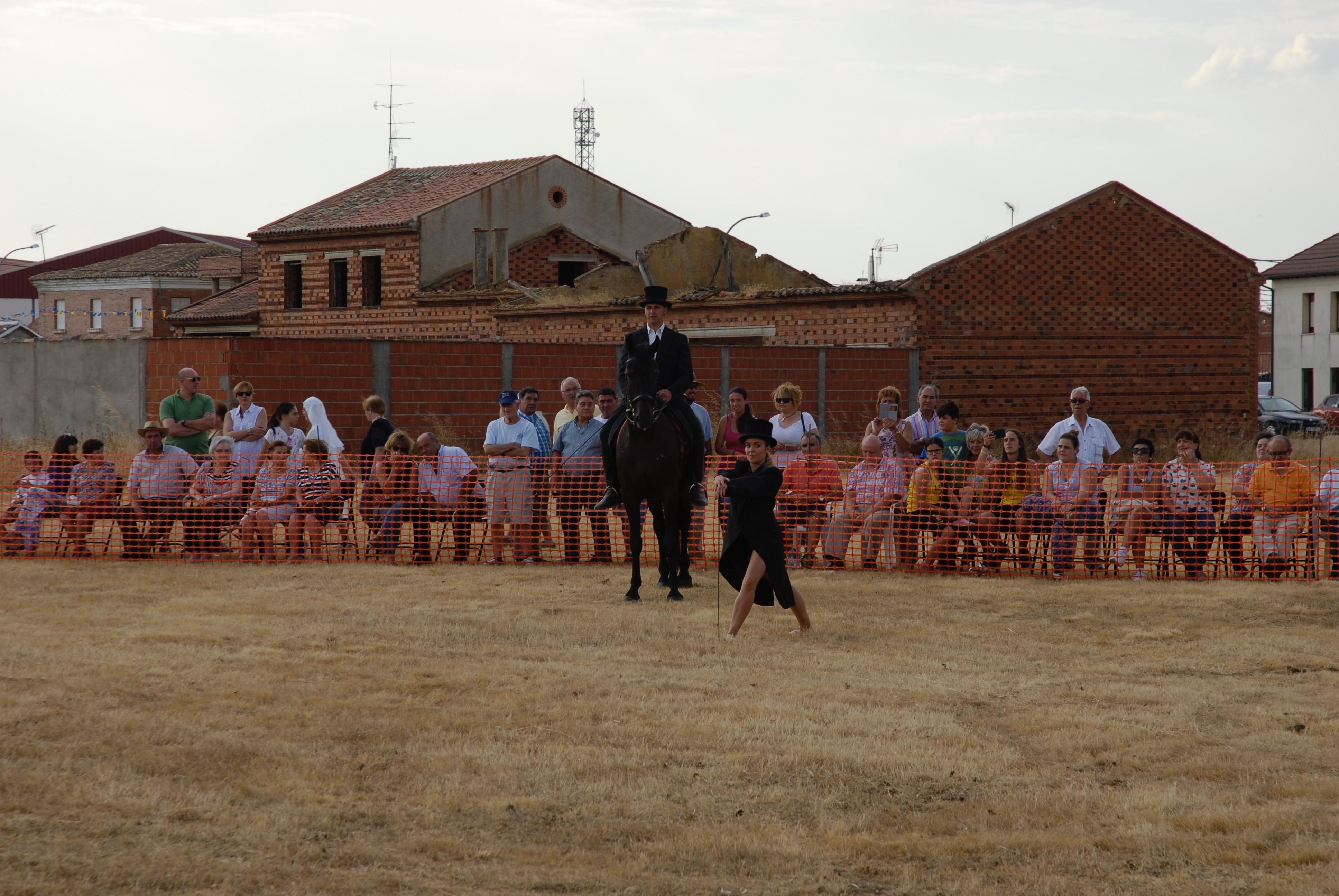 Magos de la equitación 2016 (14)