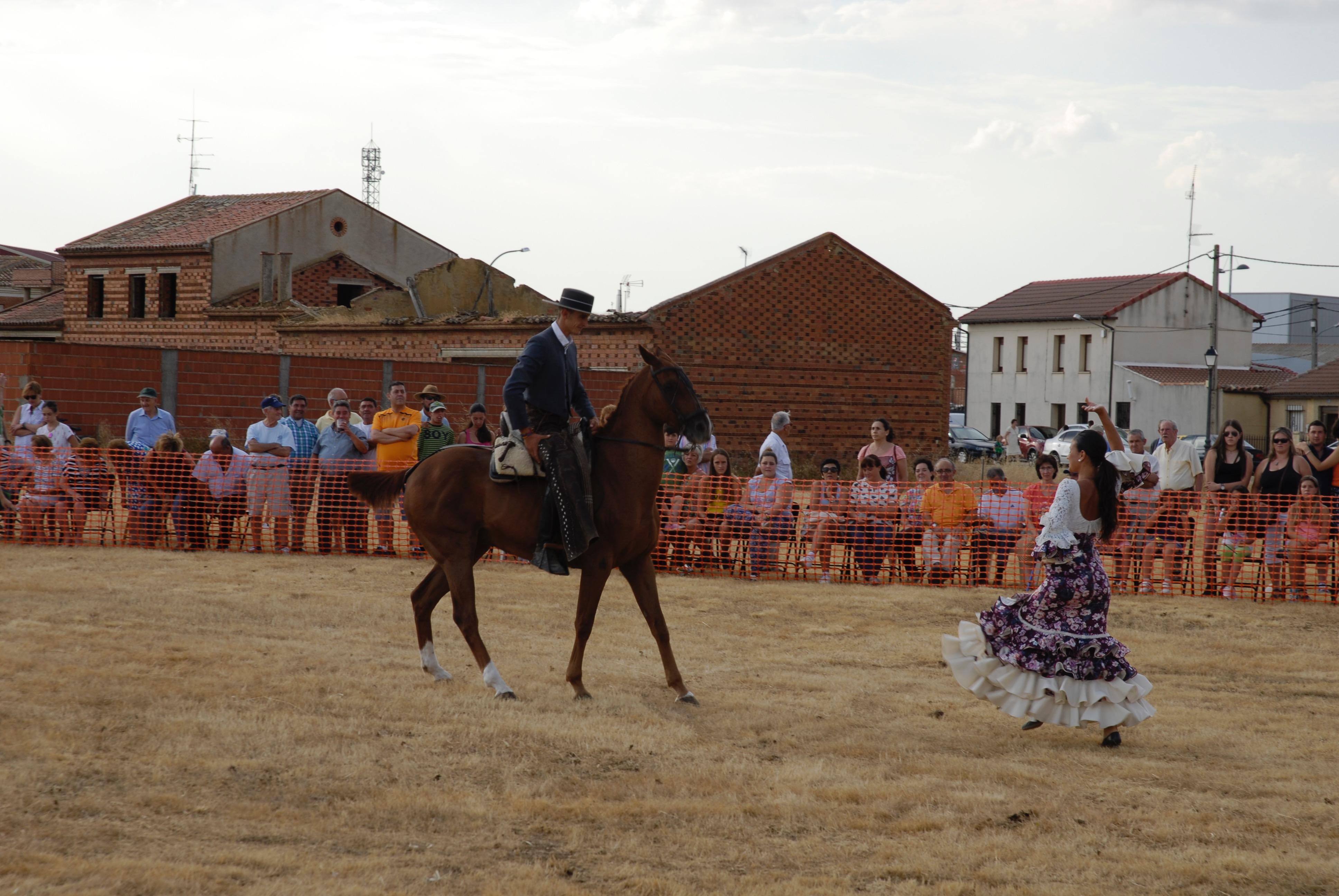Magos de la equitación 2016 (19)