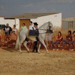 Magos de la equitación 2016 (2)