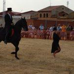 Magos de la equitación 2016 (21)