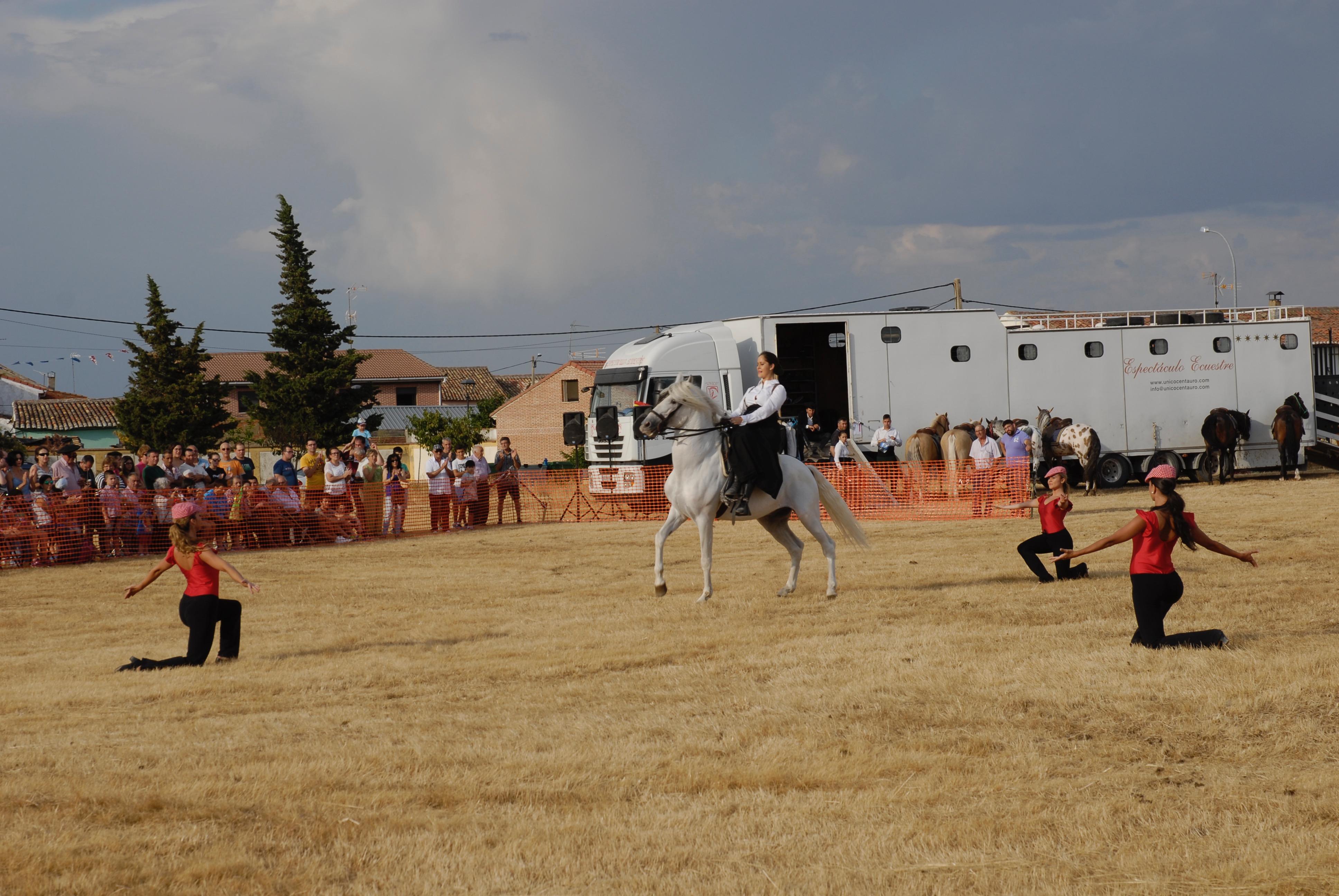 Magos de la equitación 2016 (30)