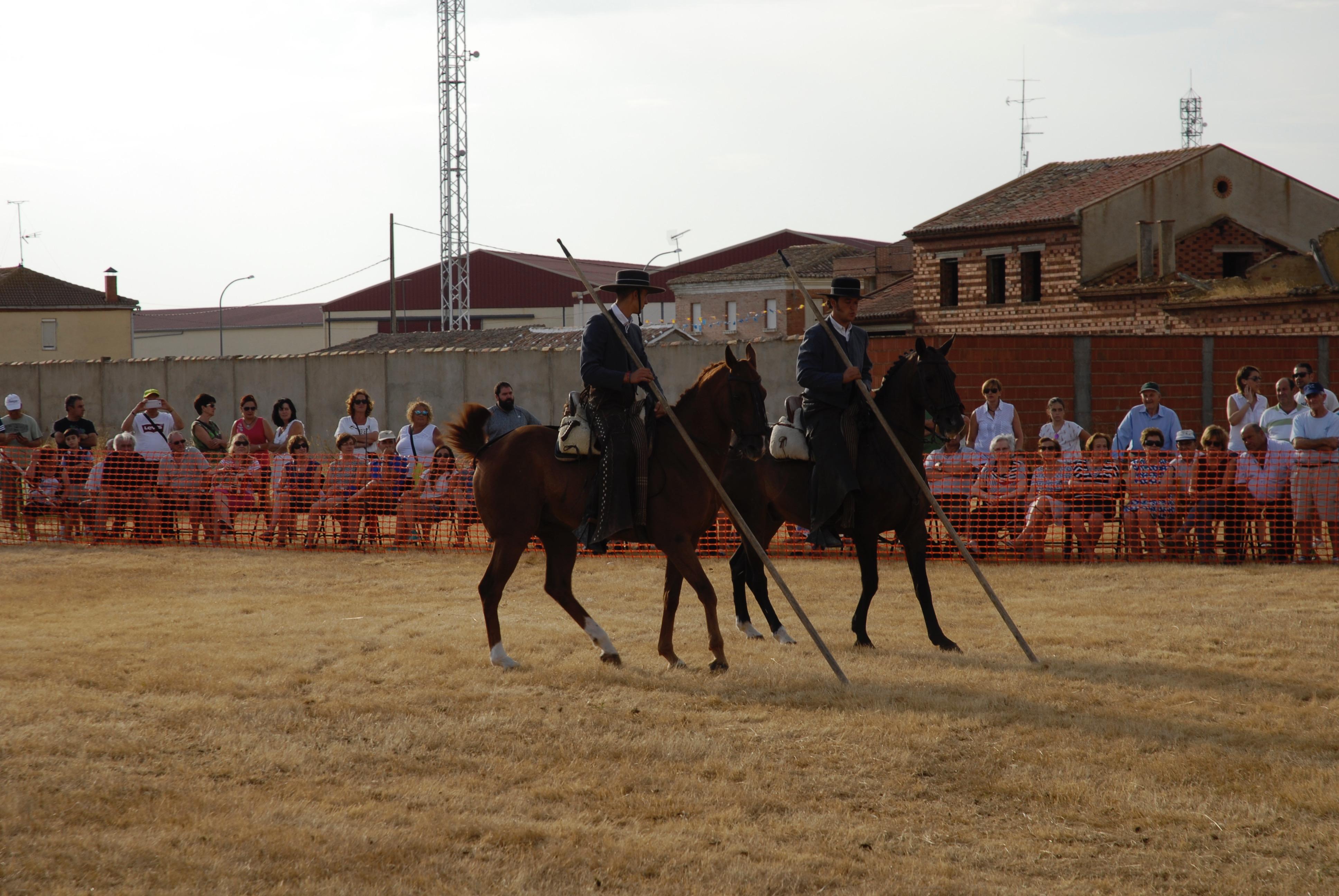 Magos de la equitación 2016 (35)