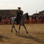 Magos de la equitación 2016 (43)