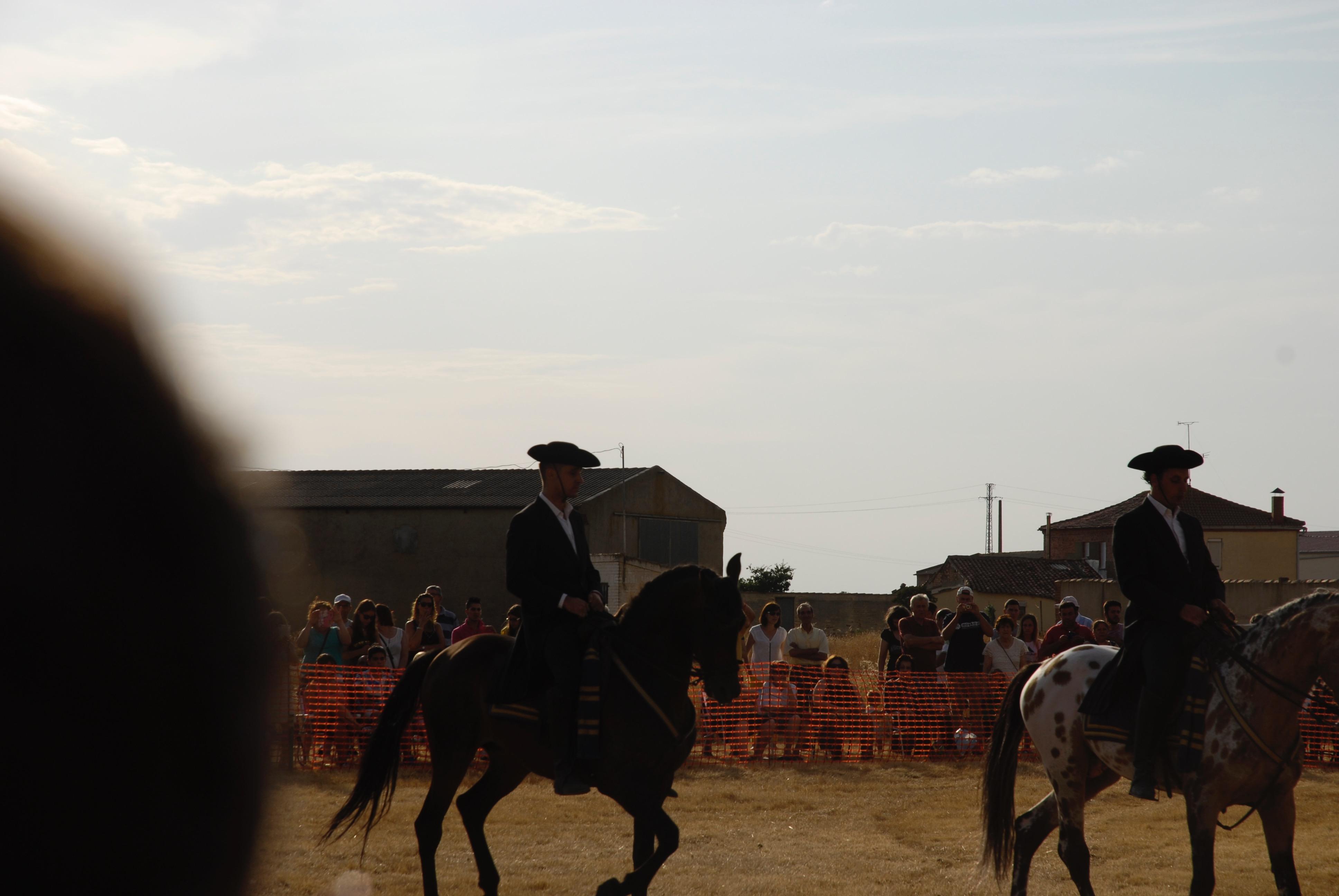 Magos de la equitación 2016 (44)