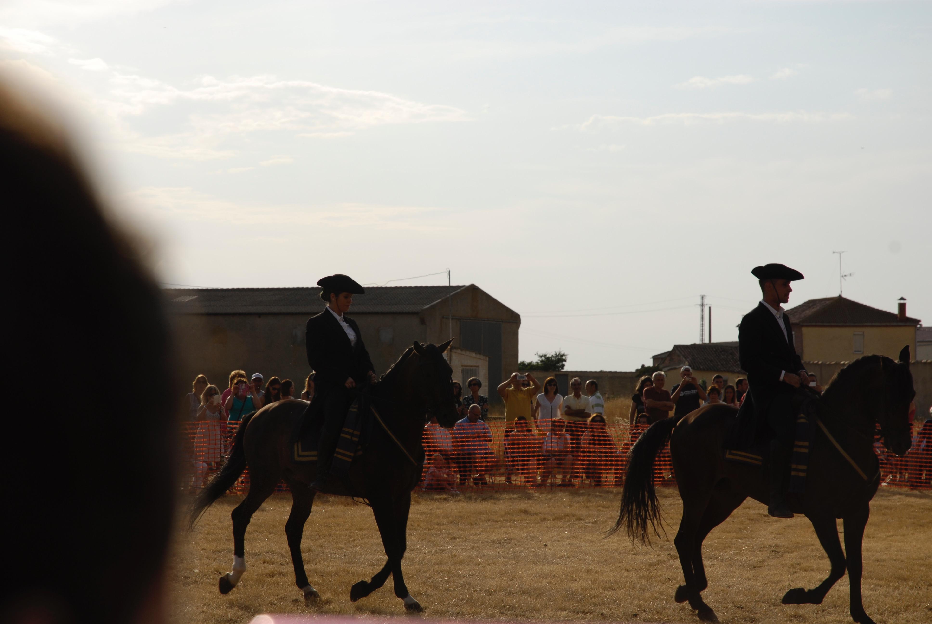 Magos de la equitación 2016 (45)