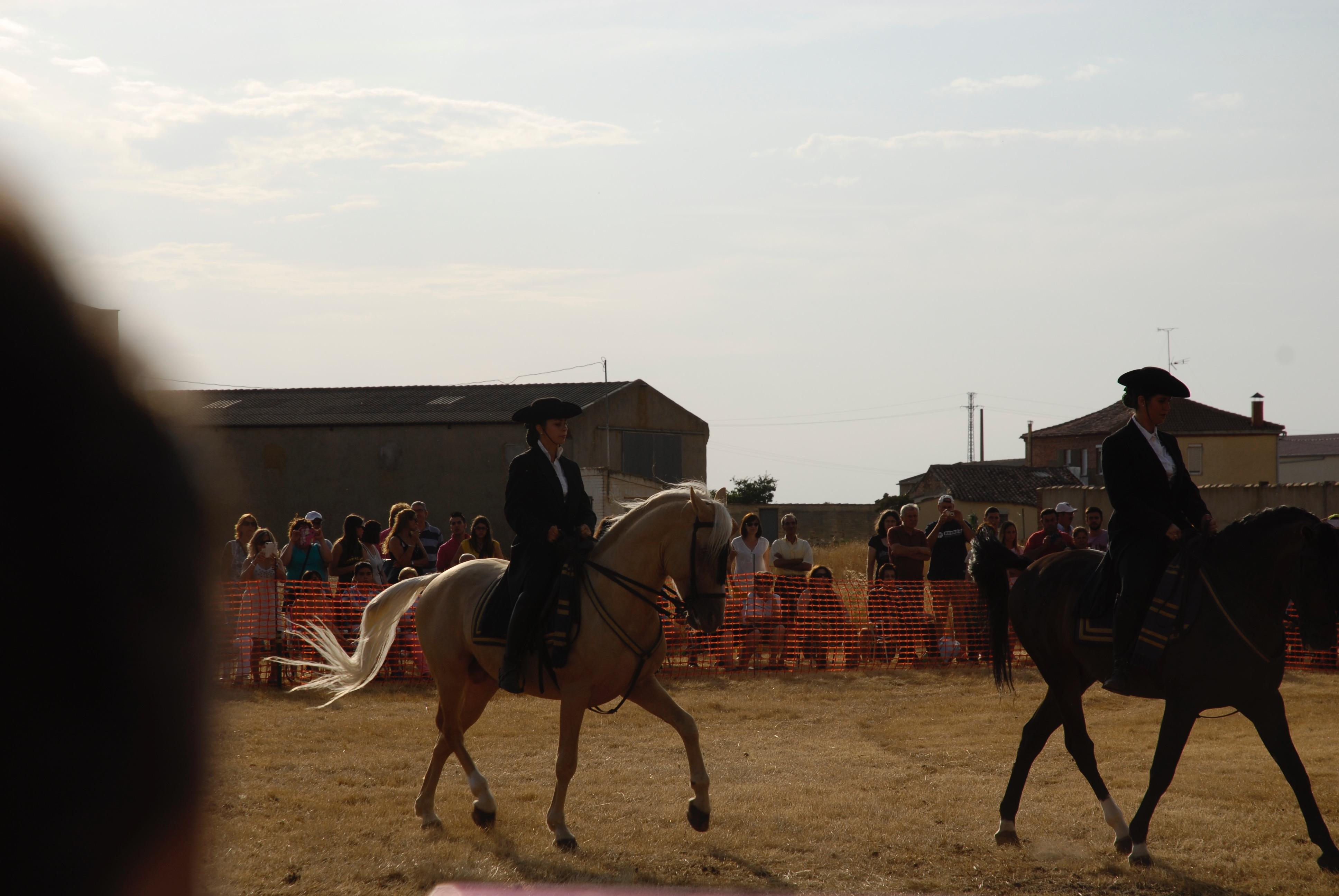 Magos de la equitación 2016 (46)