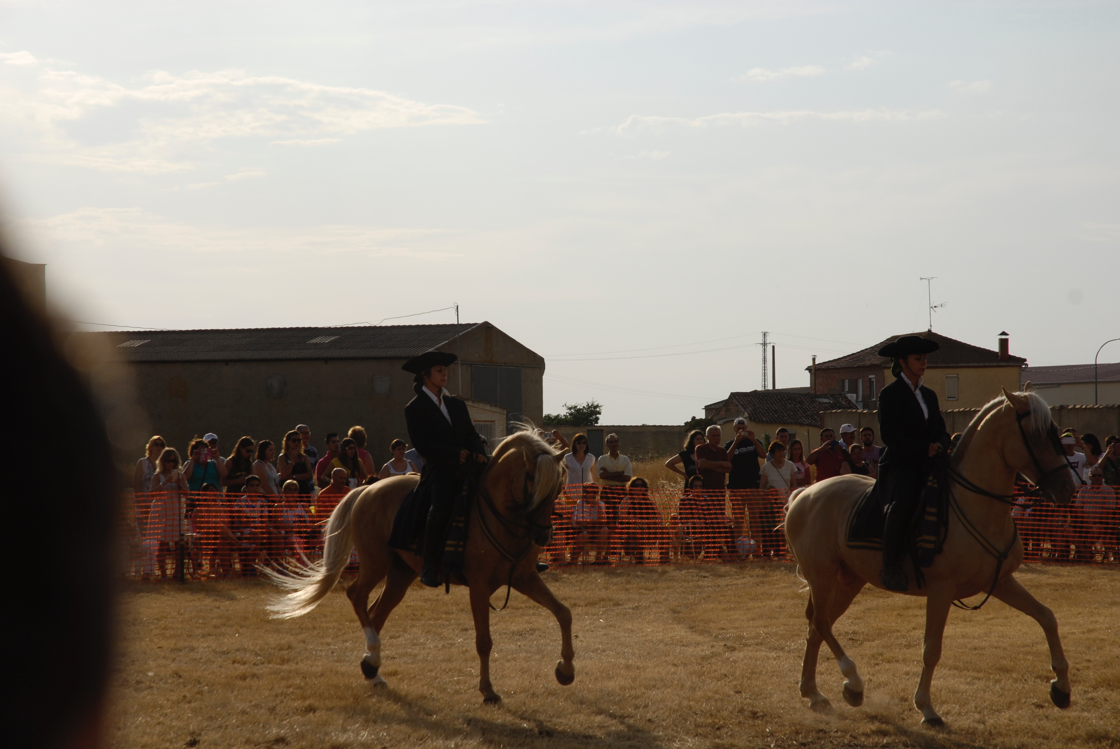 Magos de la equitación 2016 (47)