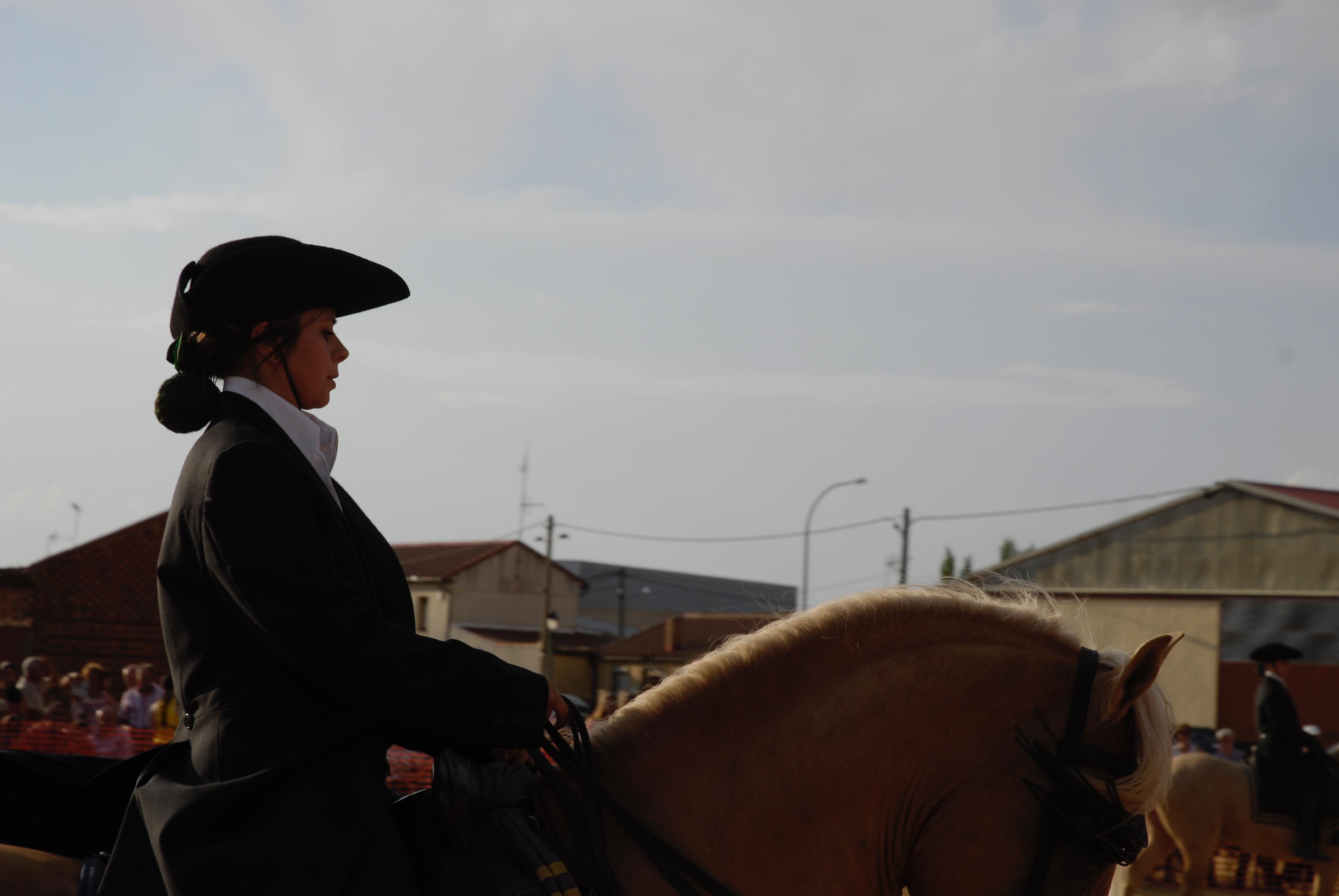 Magos de la equitación 2016 (50)