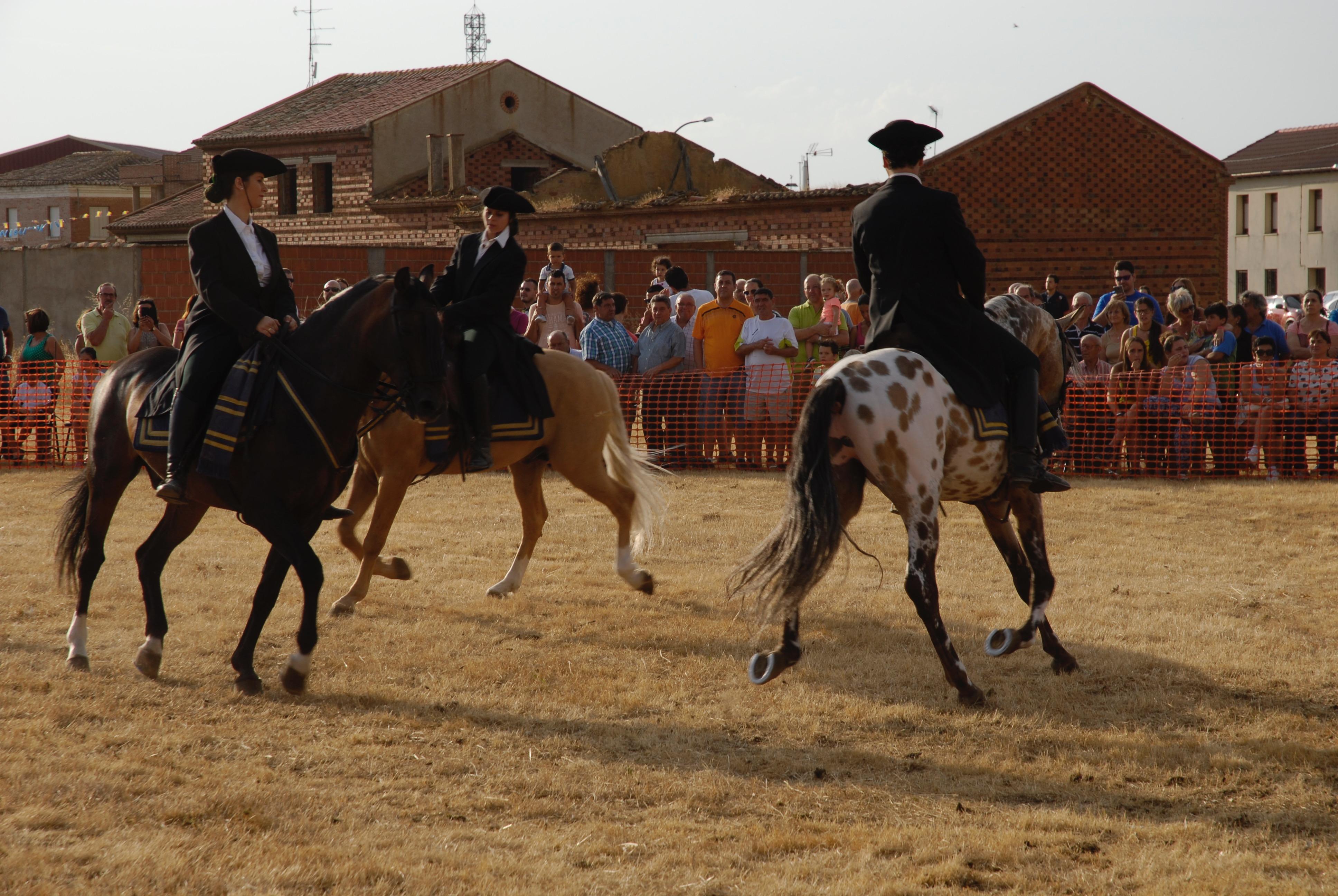 Magos de la equitación 2016 (52)