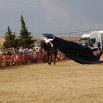 Magos de la equitación 2016 (55)
